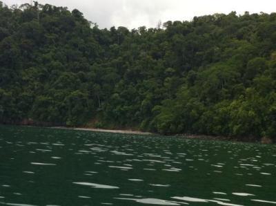Beautiful scenery / Picture taken while kayaking