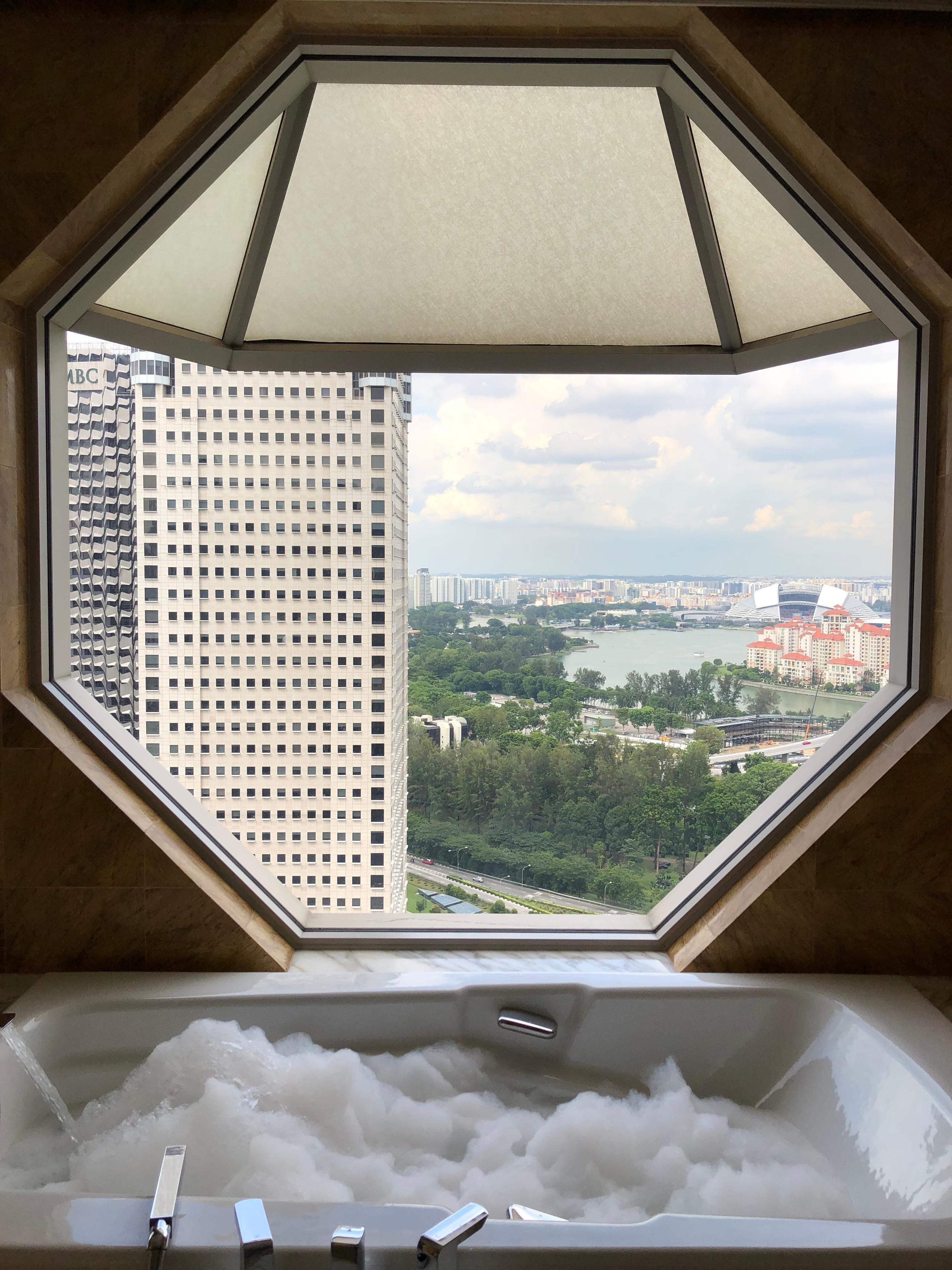 View from Bathroom while you take a bath!