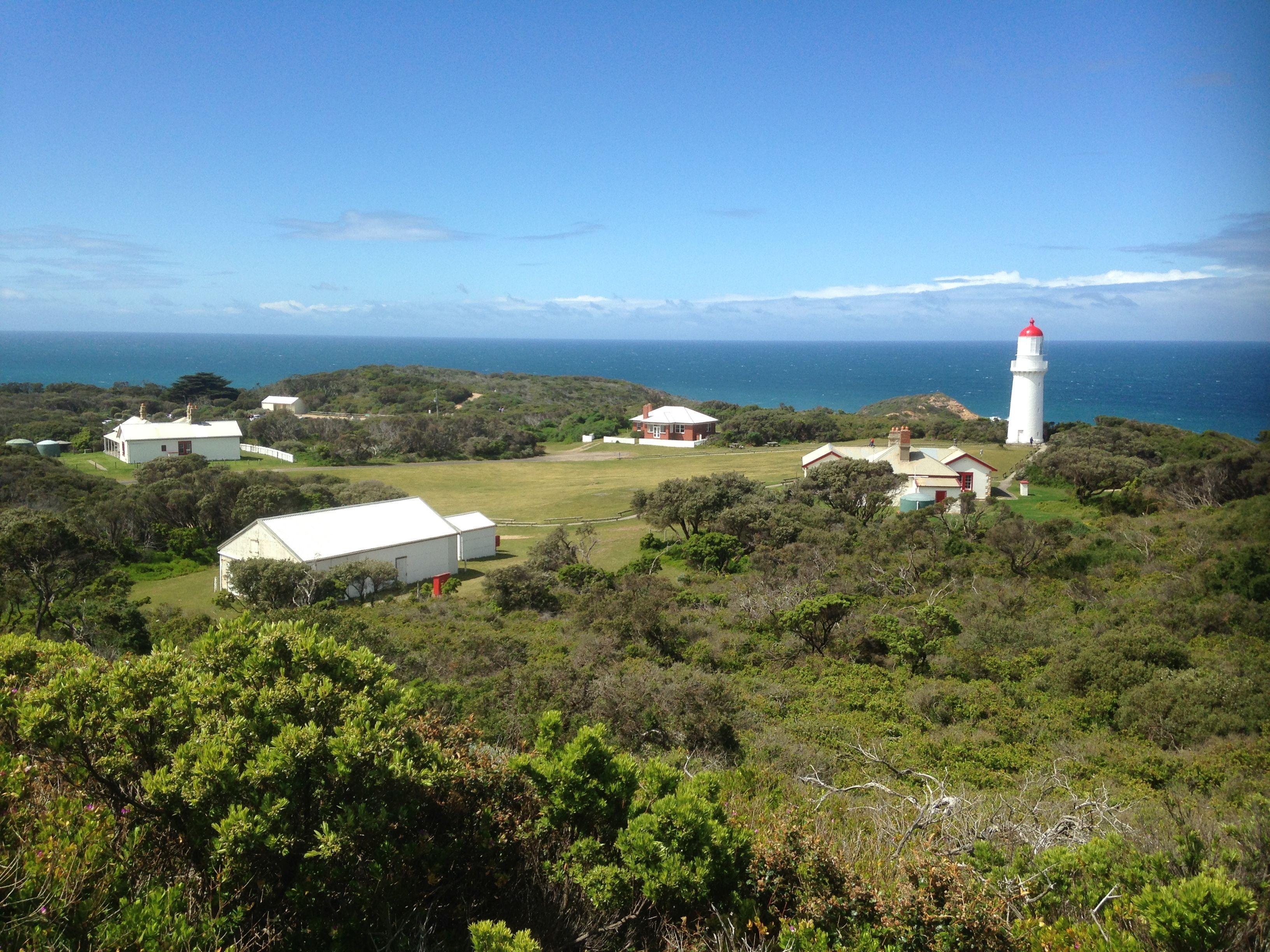 Cape Schanck Coast Line