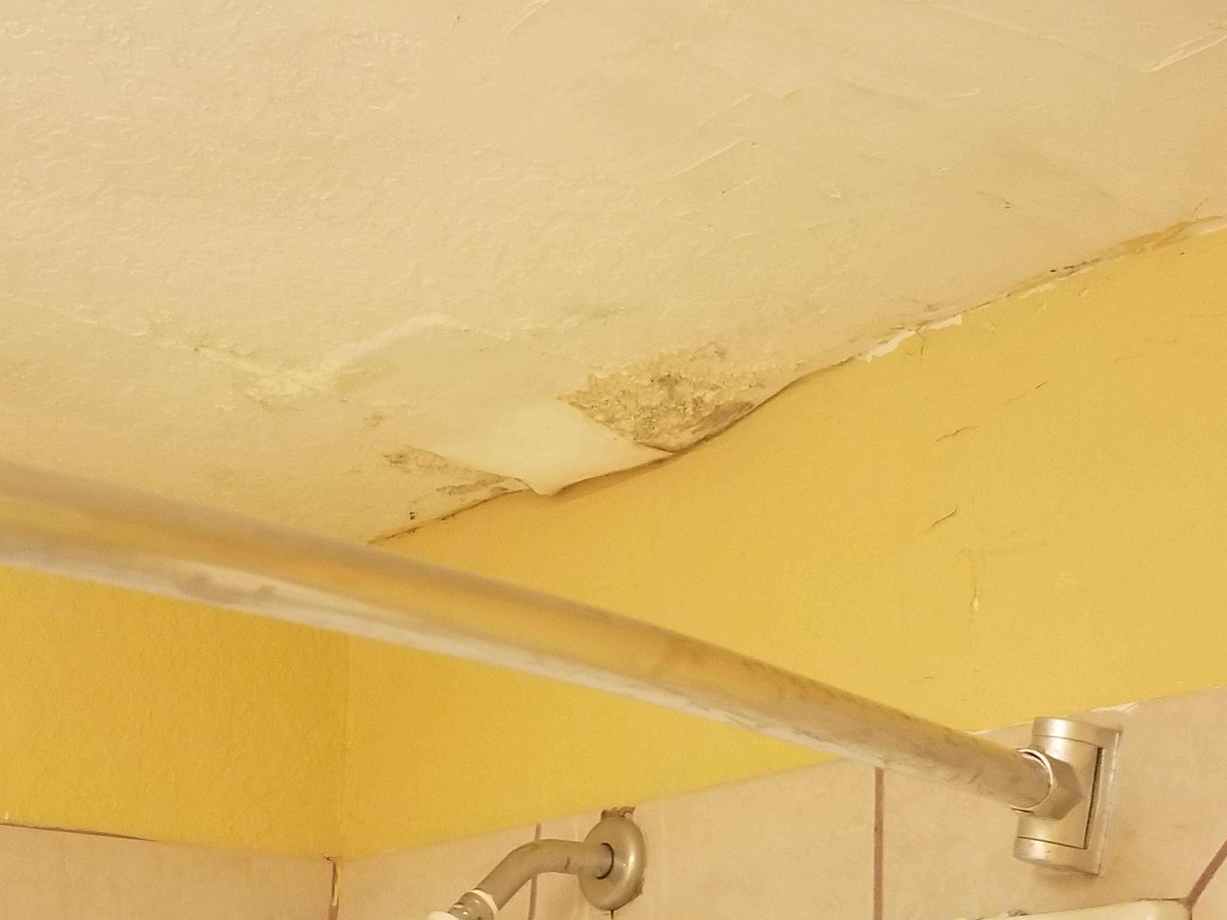 Source of mold