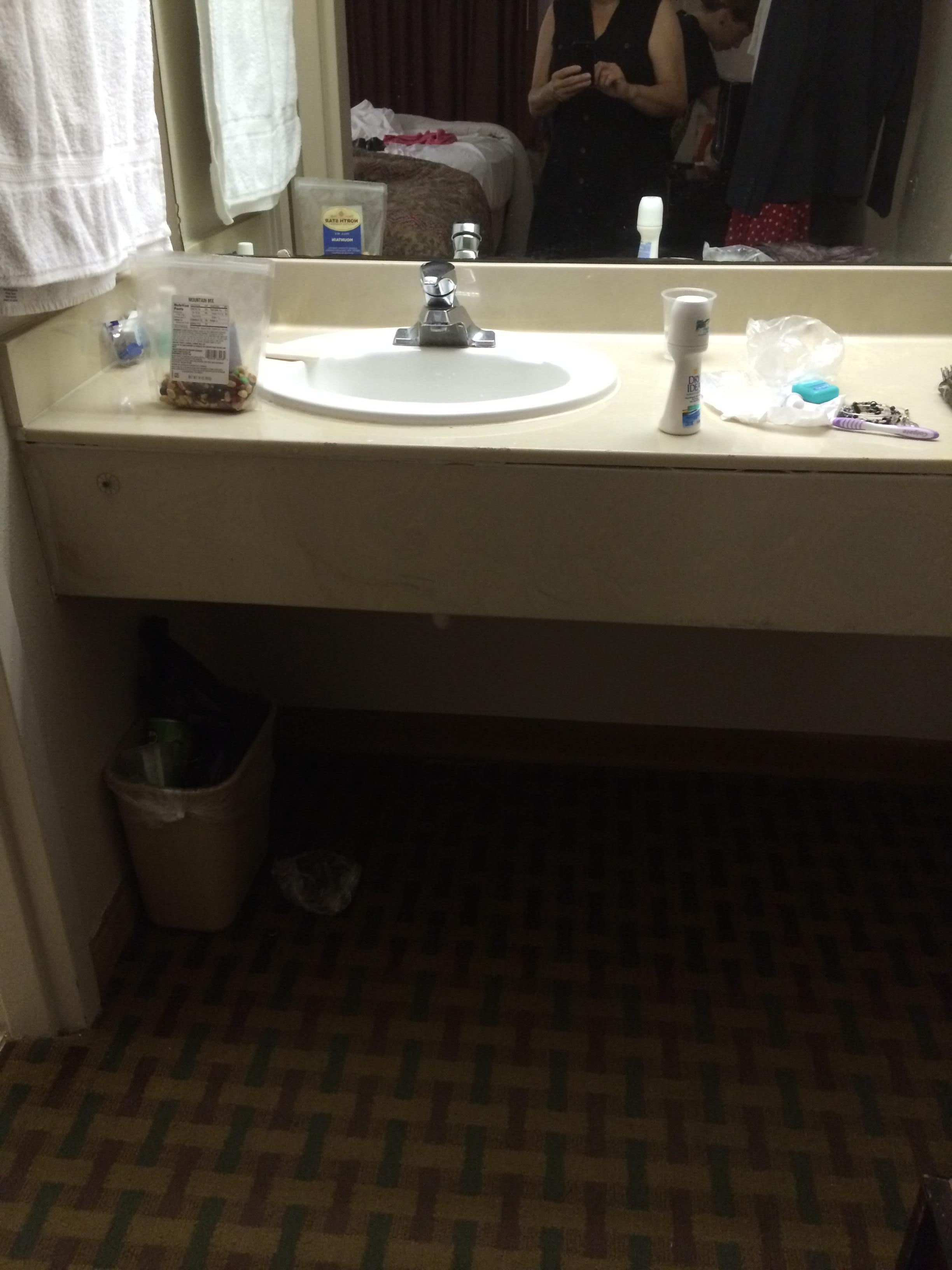 Roach on sink