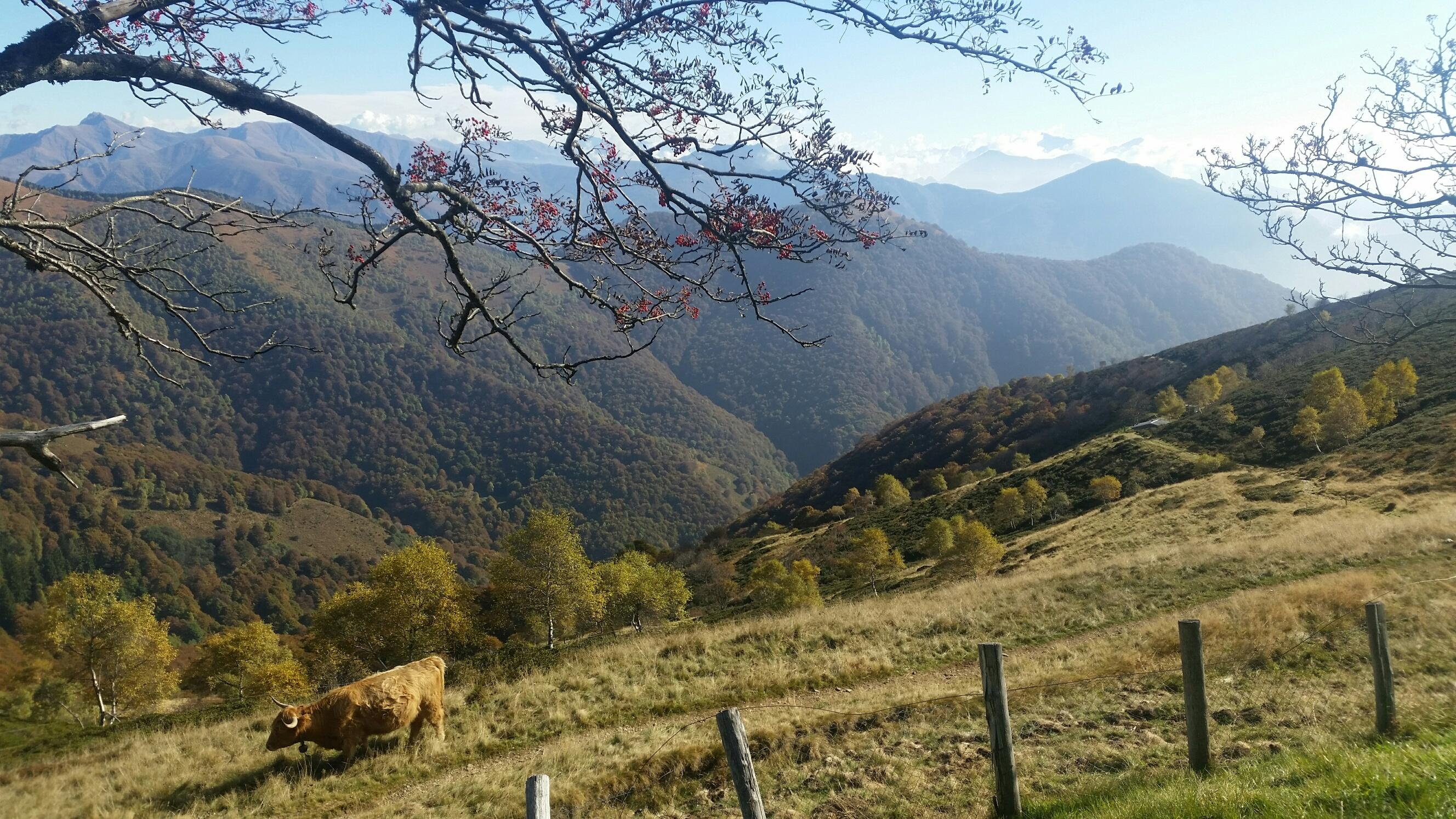 Monte Lema - Monte Tamaro