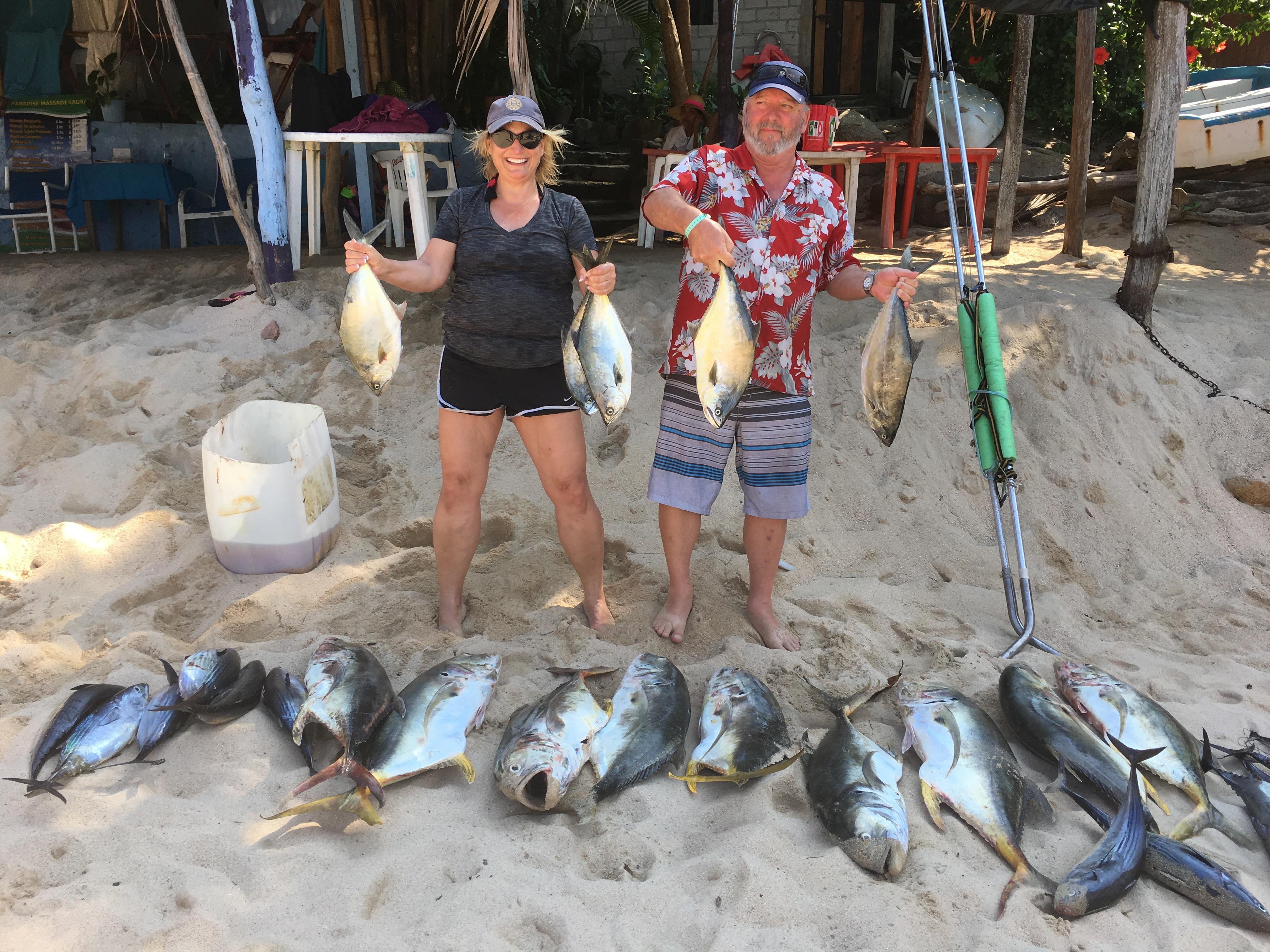 Lots of fish !