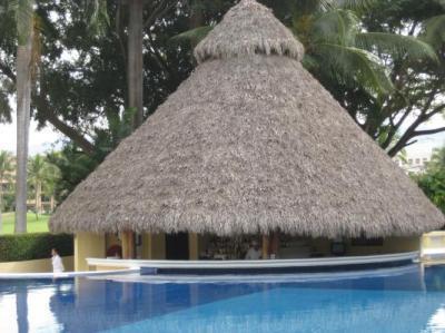 swim up bar at pool Casa Velas