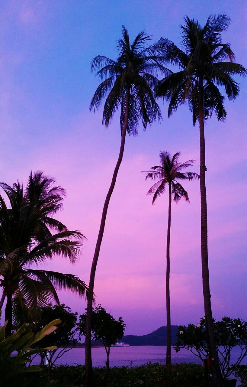 Resort beach views