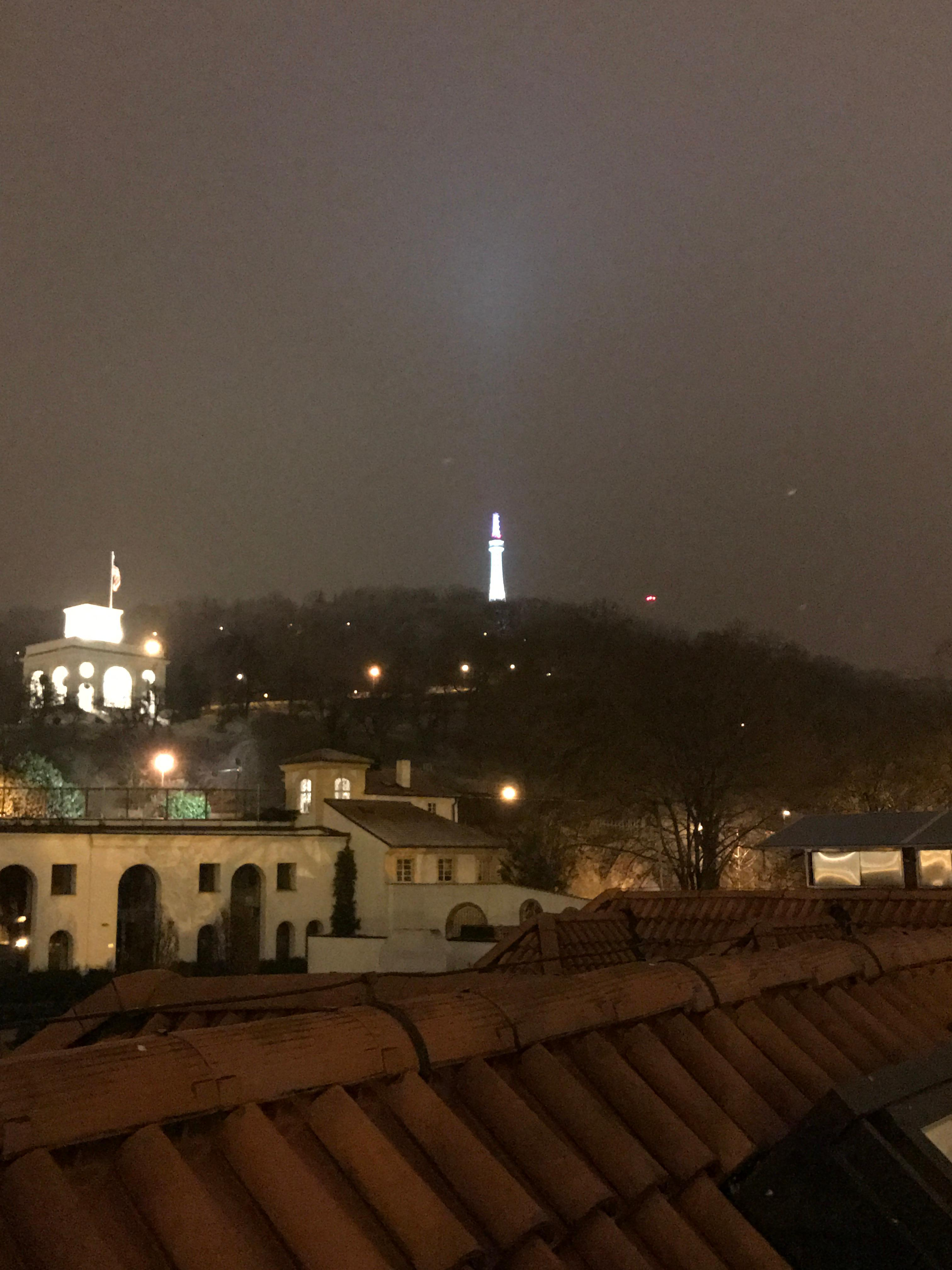 View from the rooftop garden