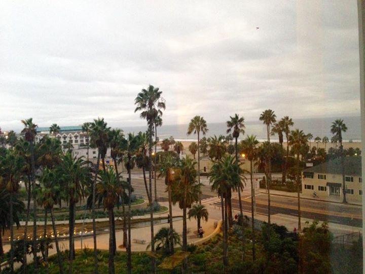 My room window view
