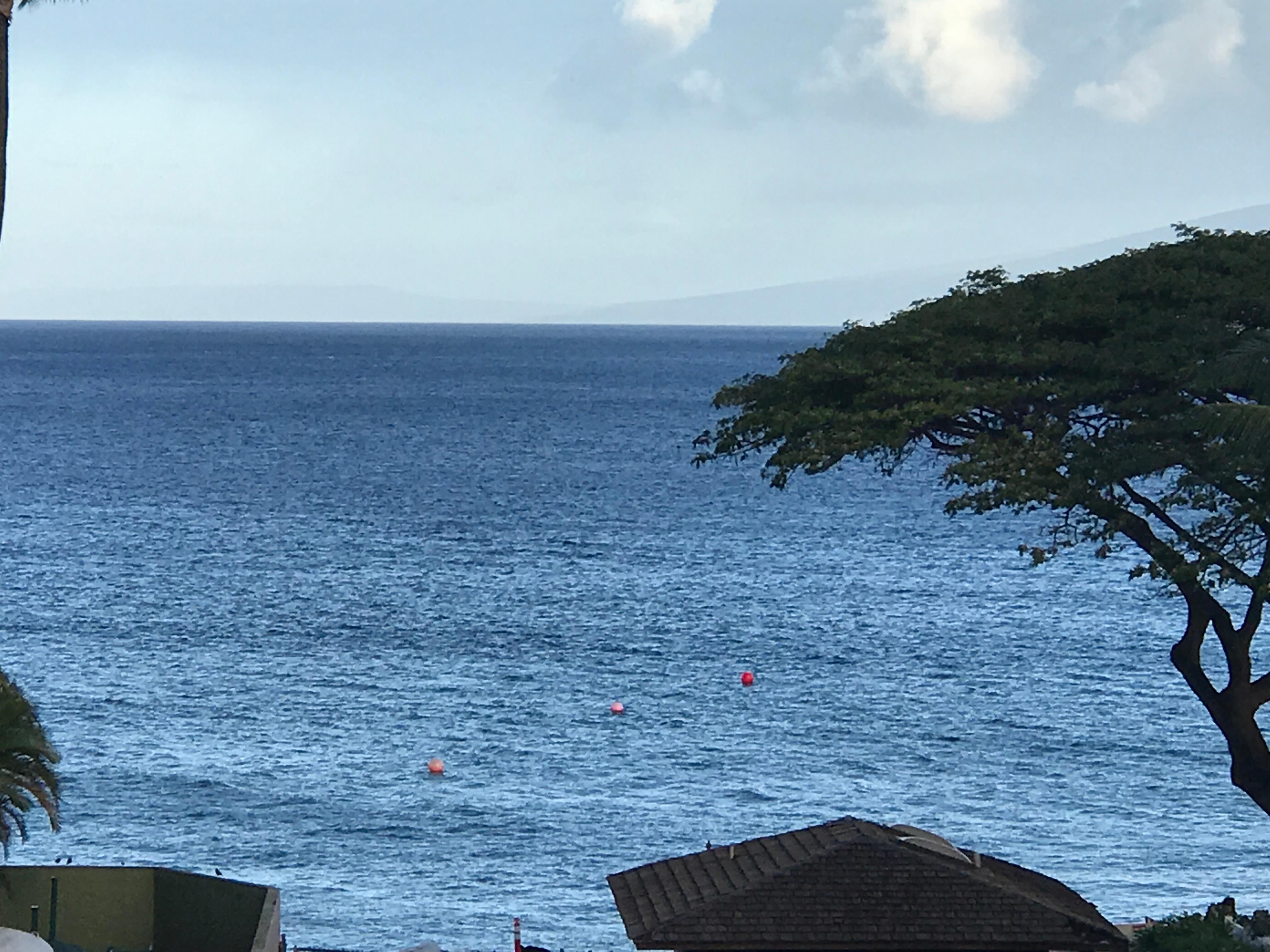 Book Kaanapali Beach Club Resort by Diamond Resorts  Maui Hotel Deals