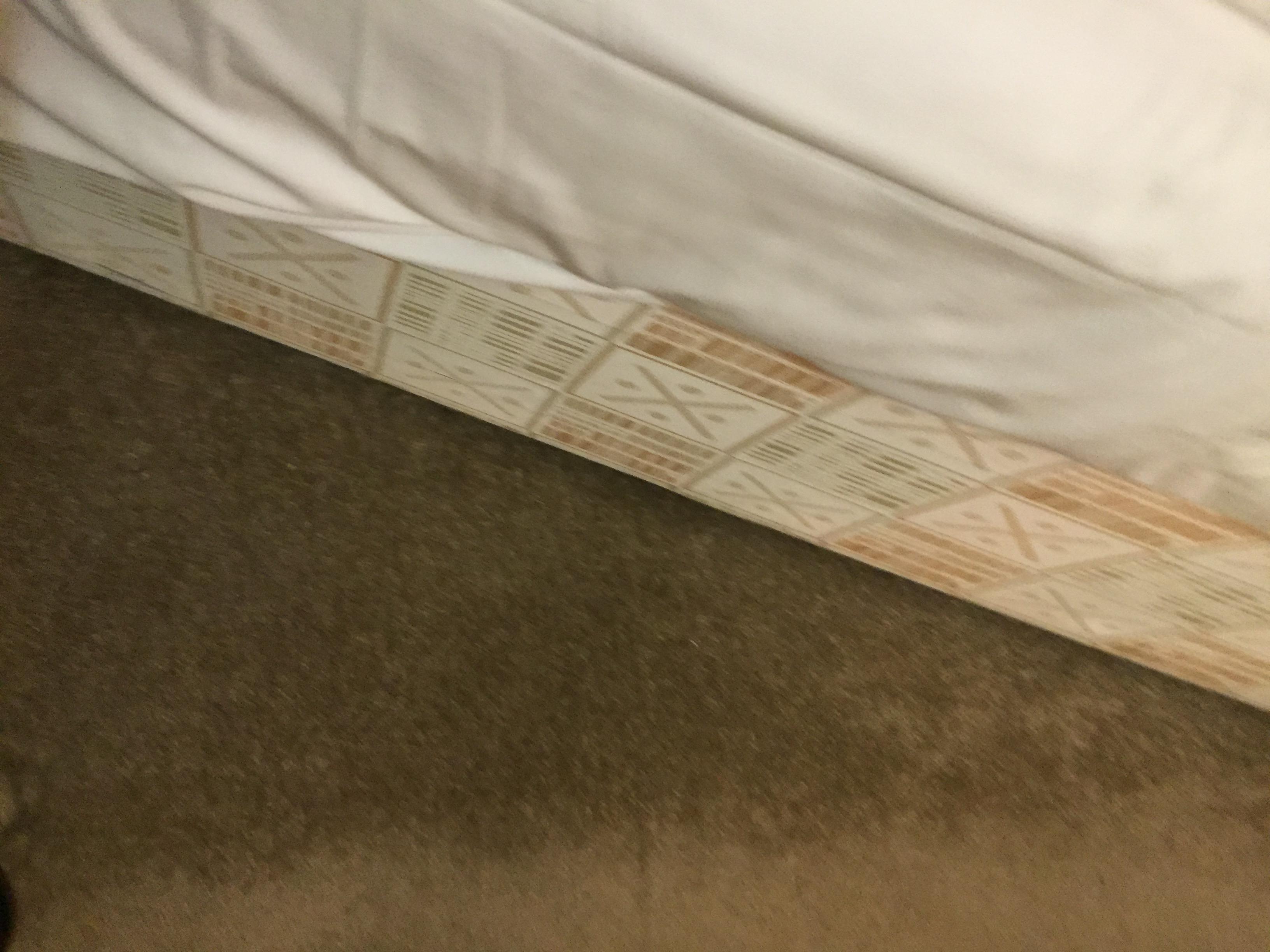Look st the carpet