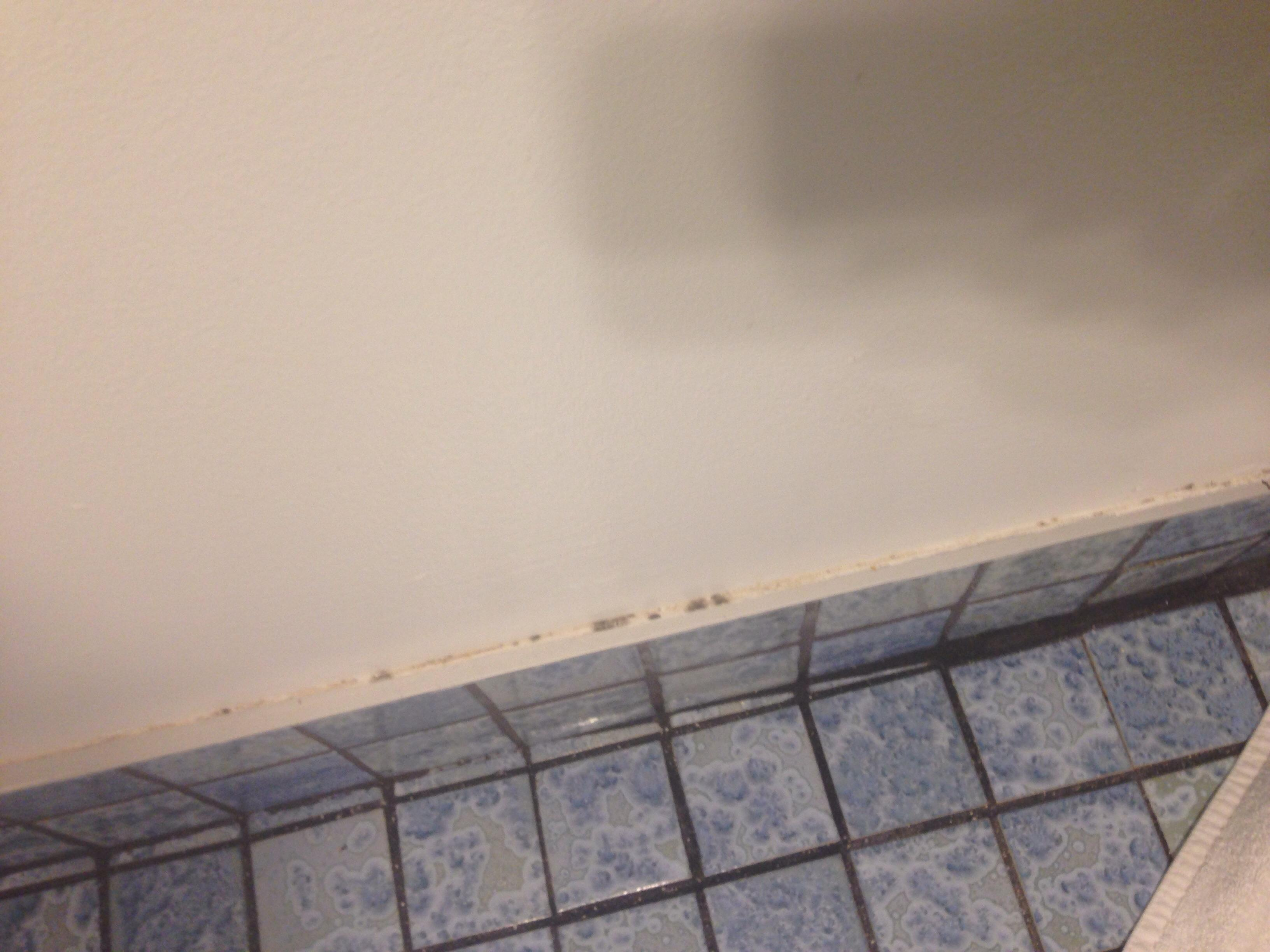 Stains behind bathroom door.
