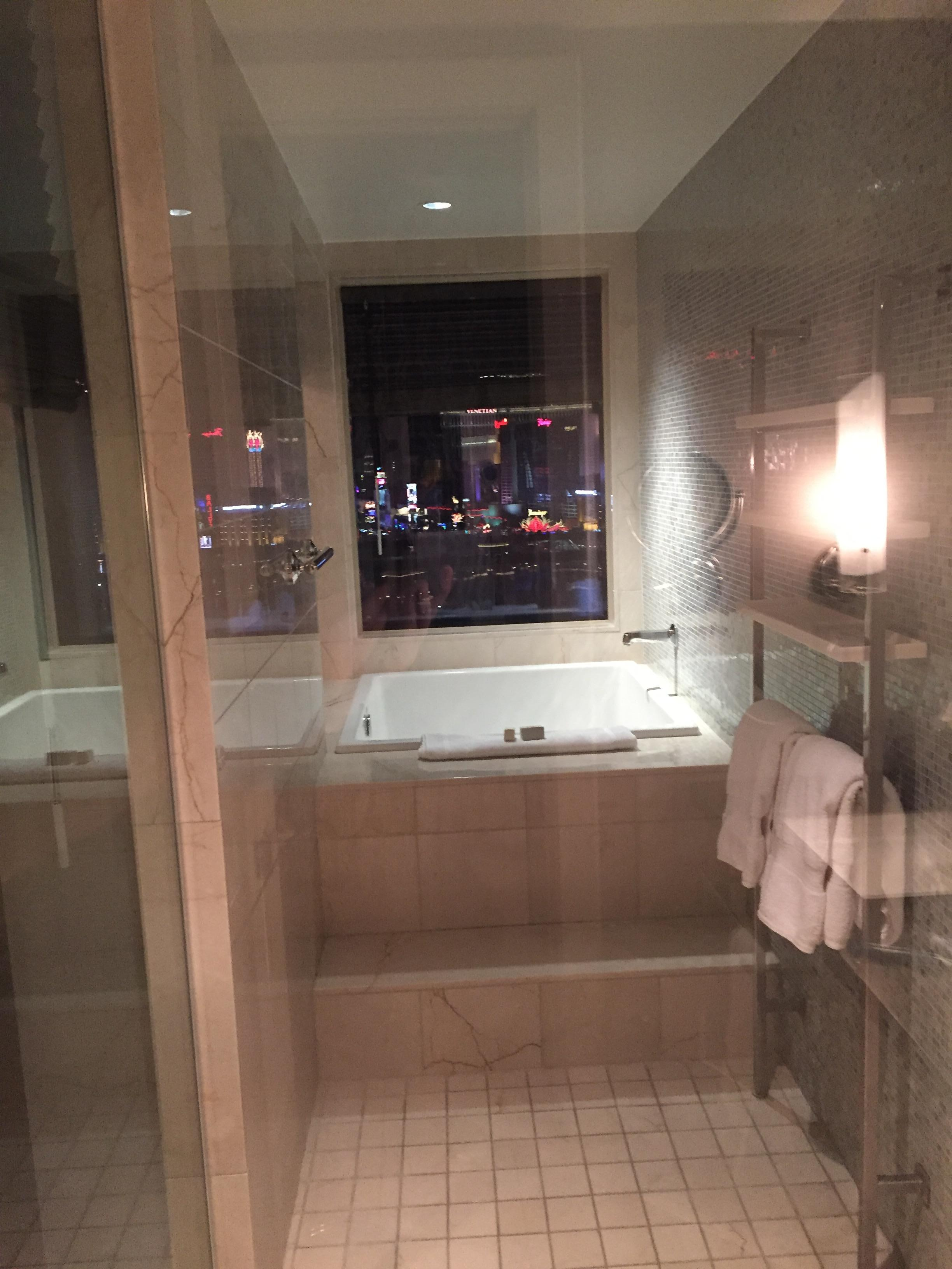 Walk in shower to soak tub overlooking the strip/fountains
