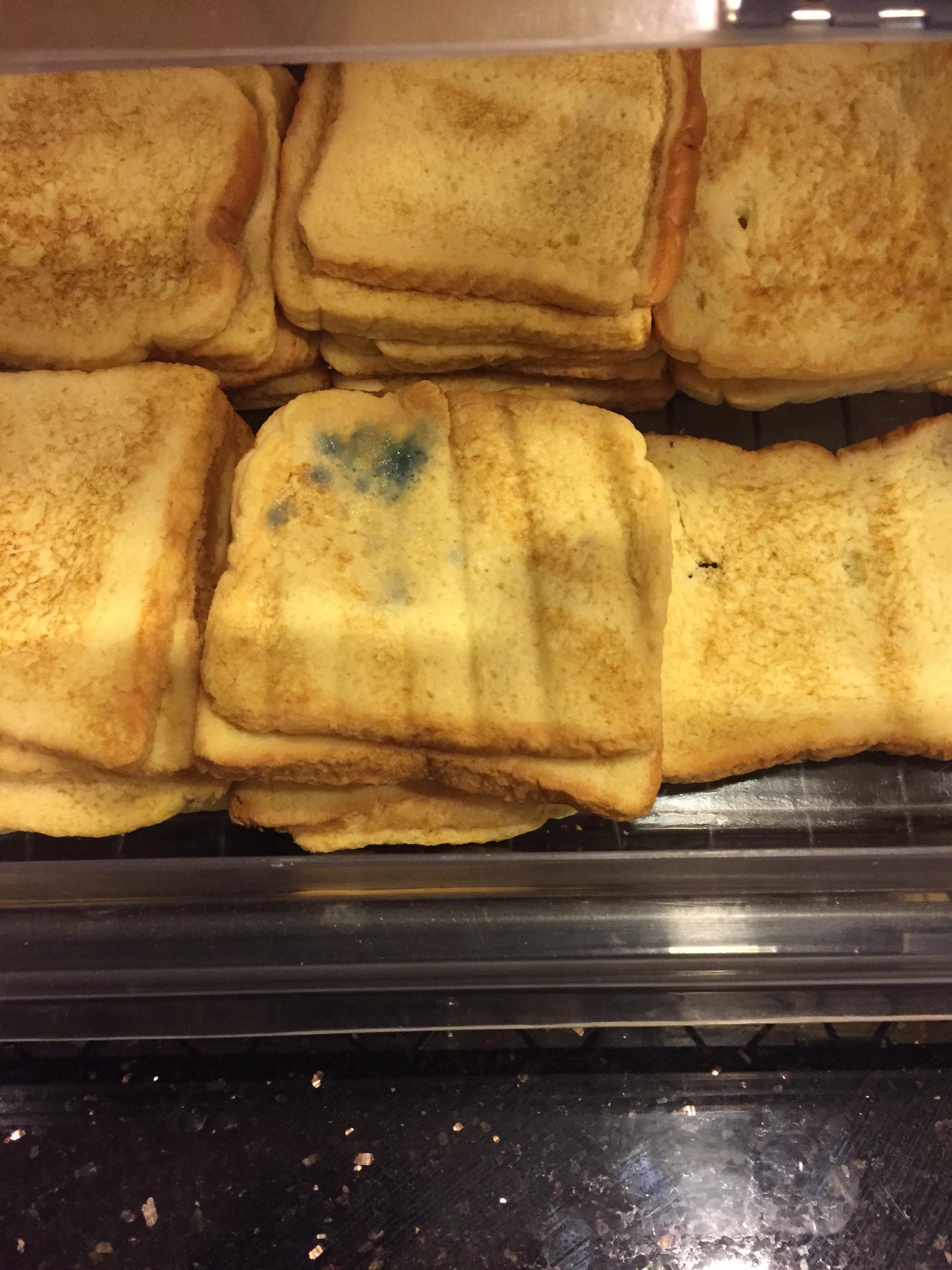 """Moldy """"French toast"""". Really?..."""