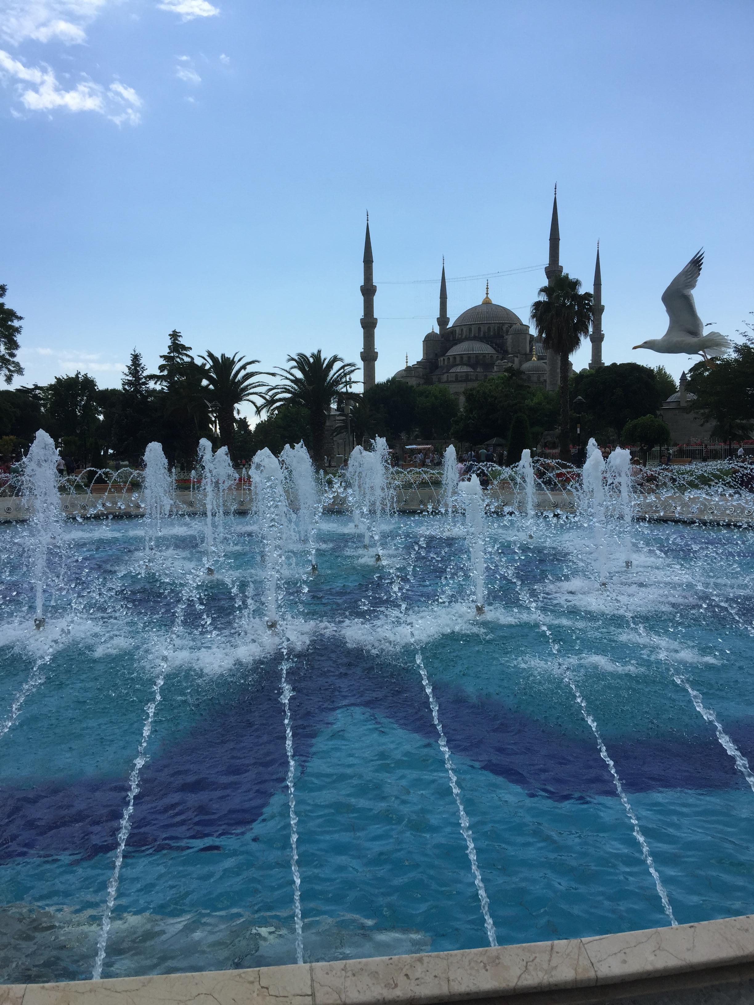 Aromatic Turkish Teas