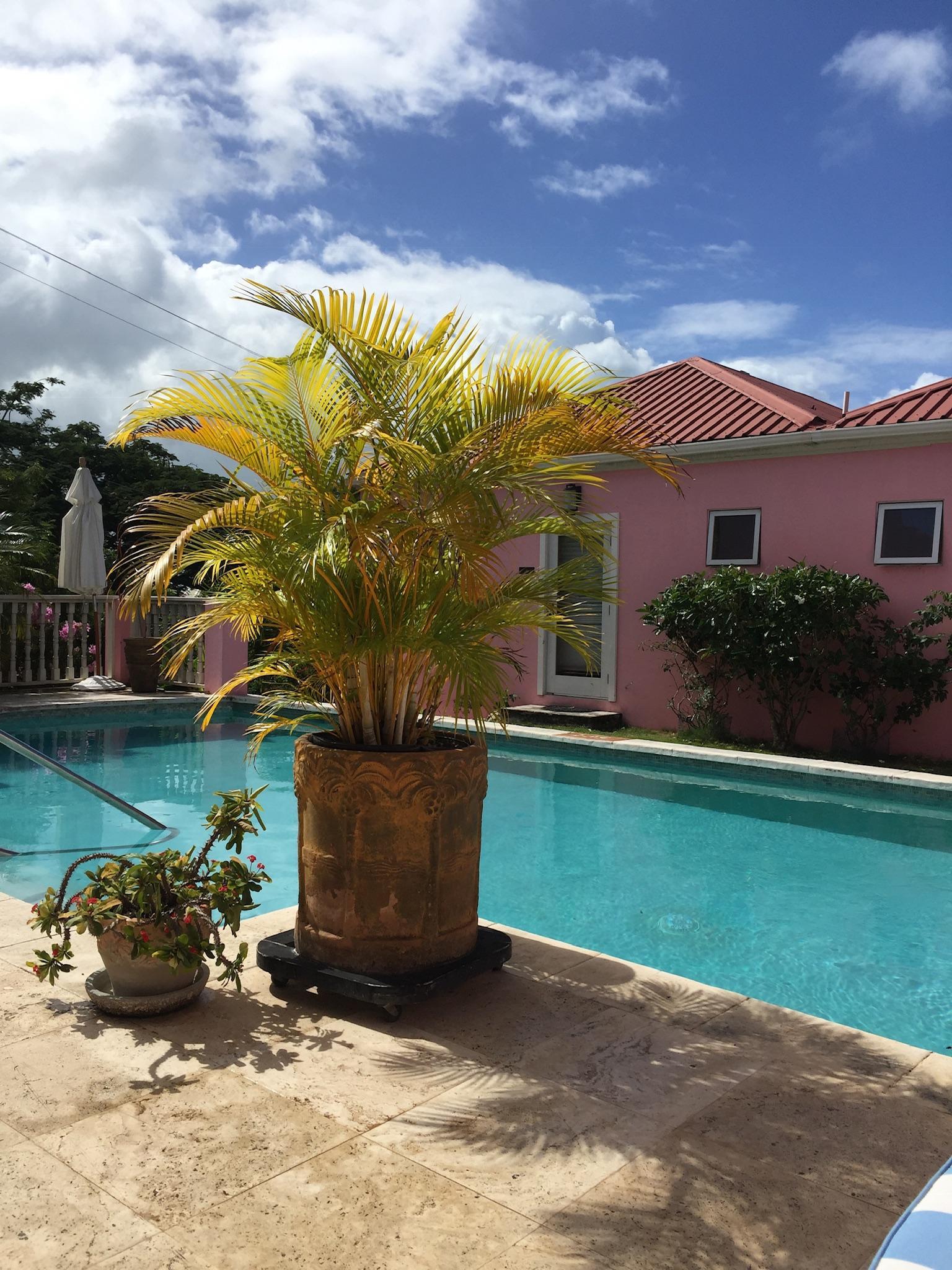a travel-assets com/ugc/hotel-reviews/6783895D0B97