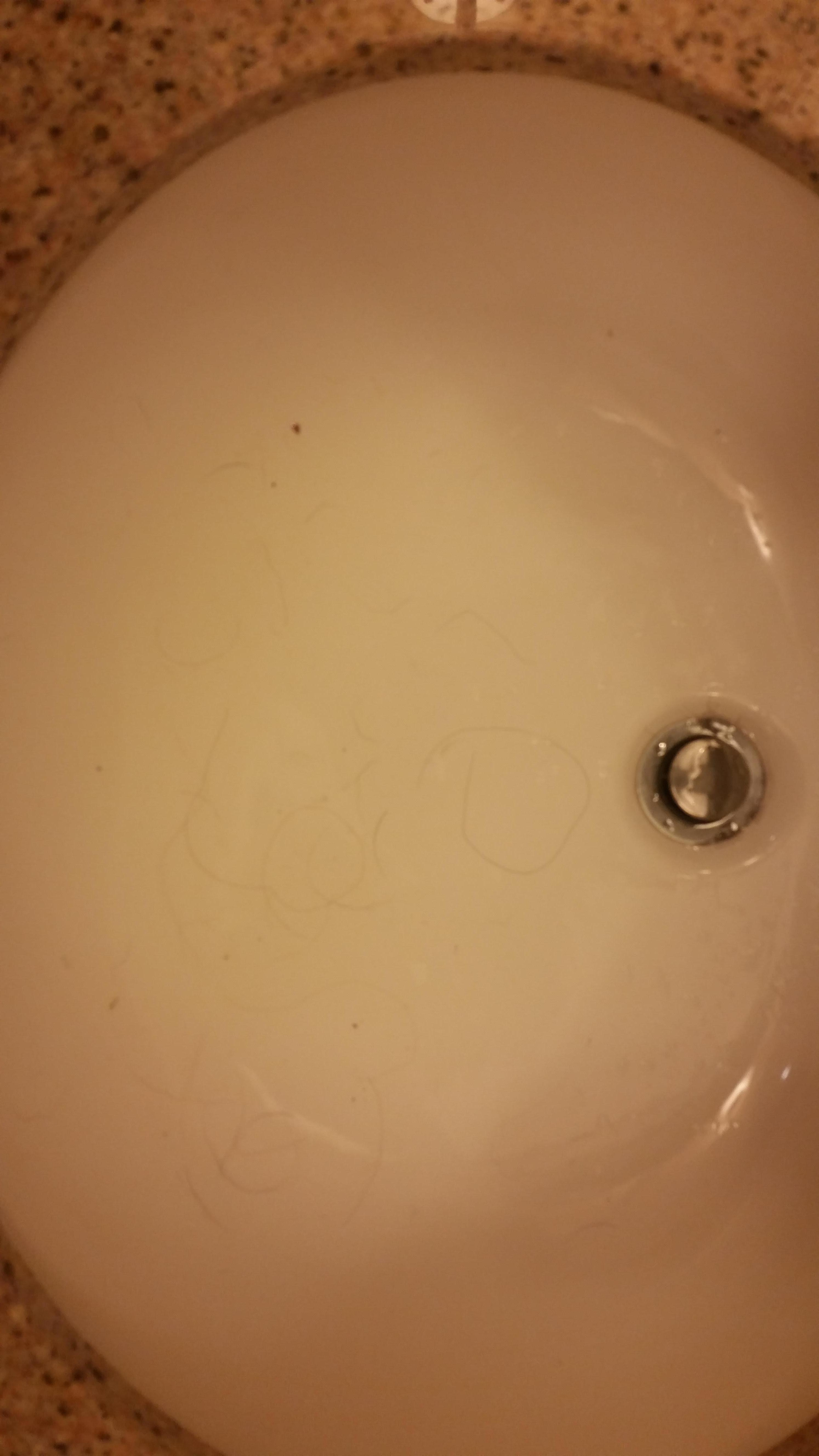 Hair in sink, tough to see here
