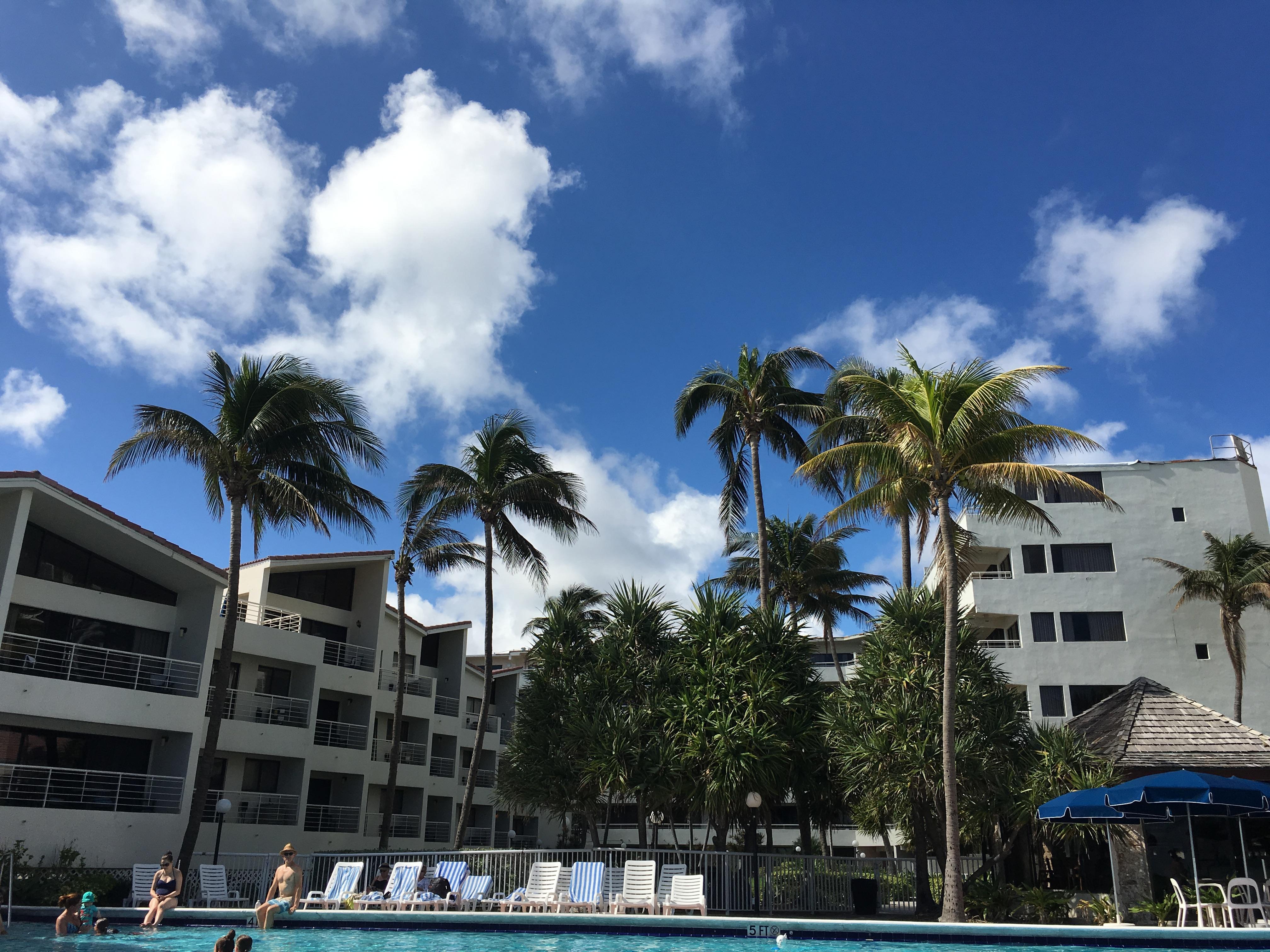 Pool view ❤️