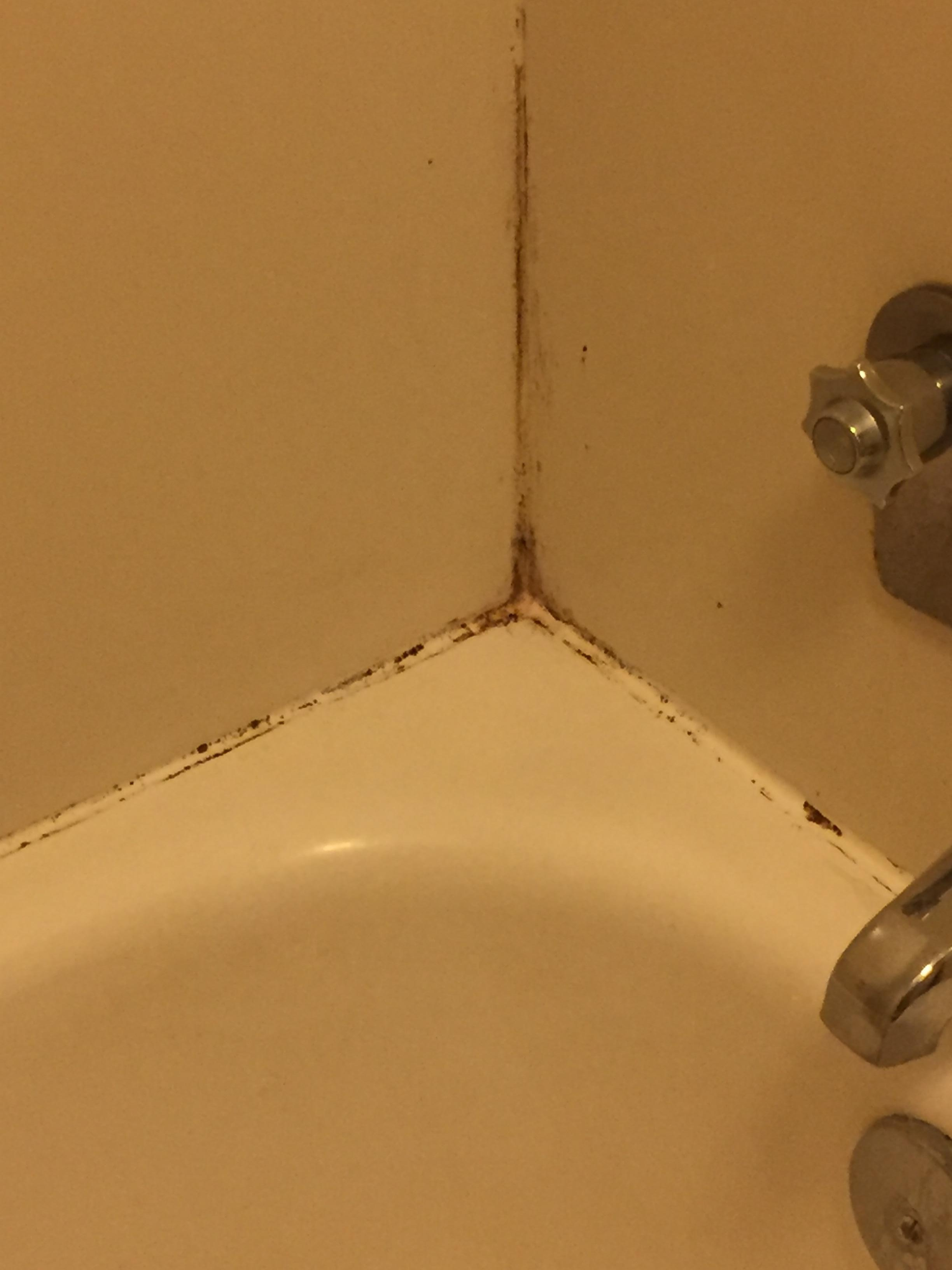 One of the nasty corners of the tub