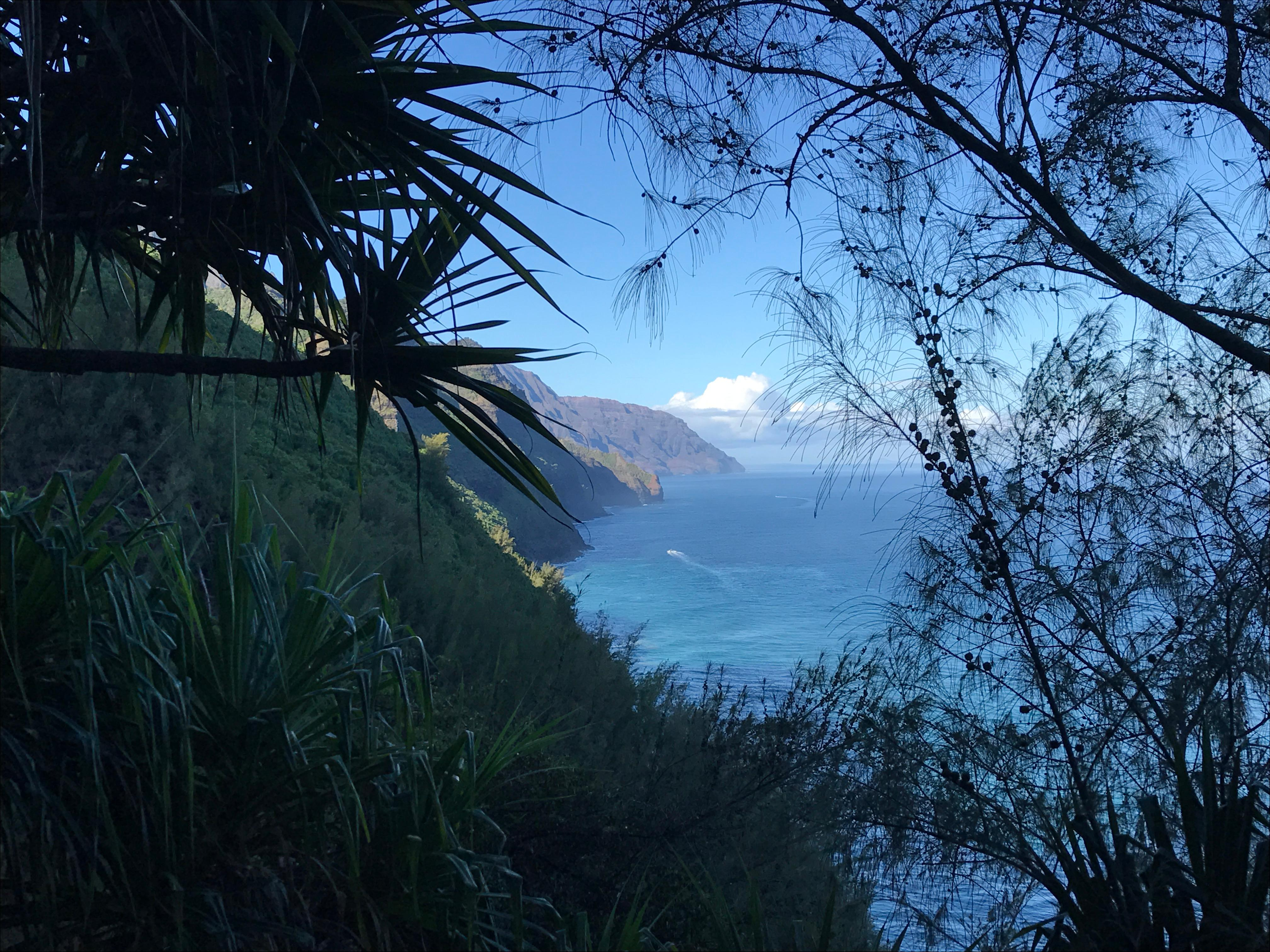Na Pali Coast from the Kalalau Trail