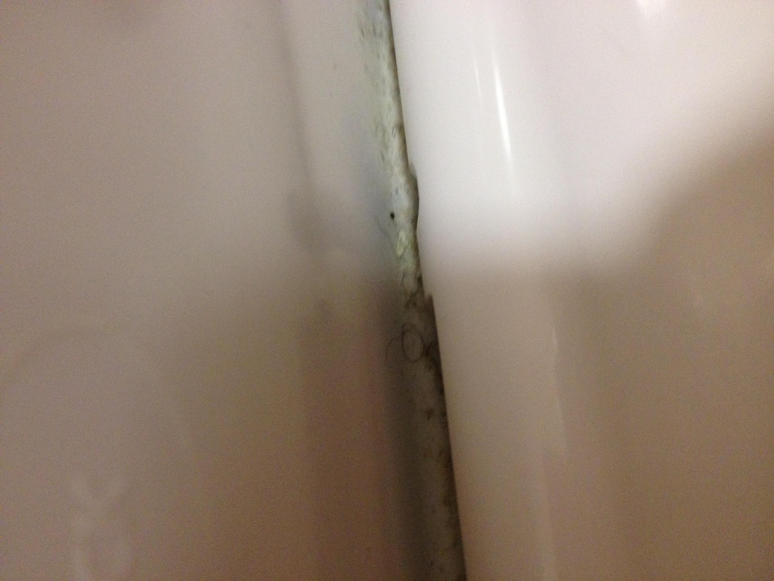 Behind the toilet seat