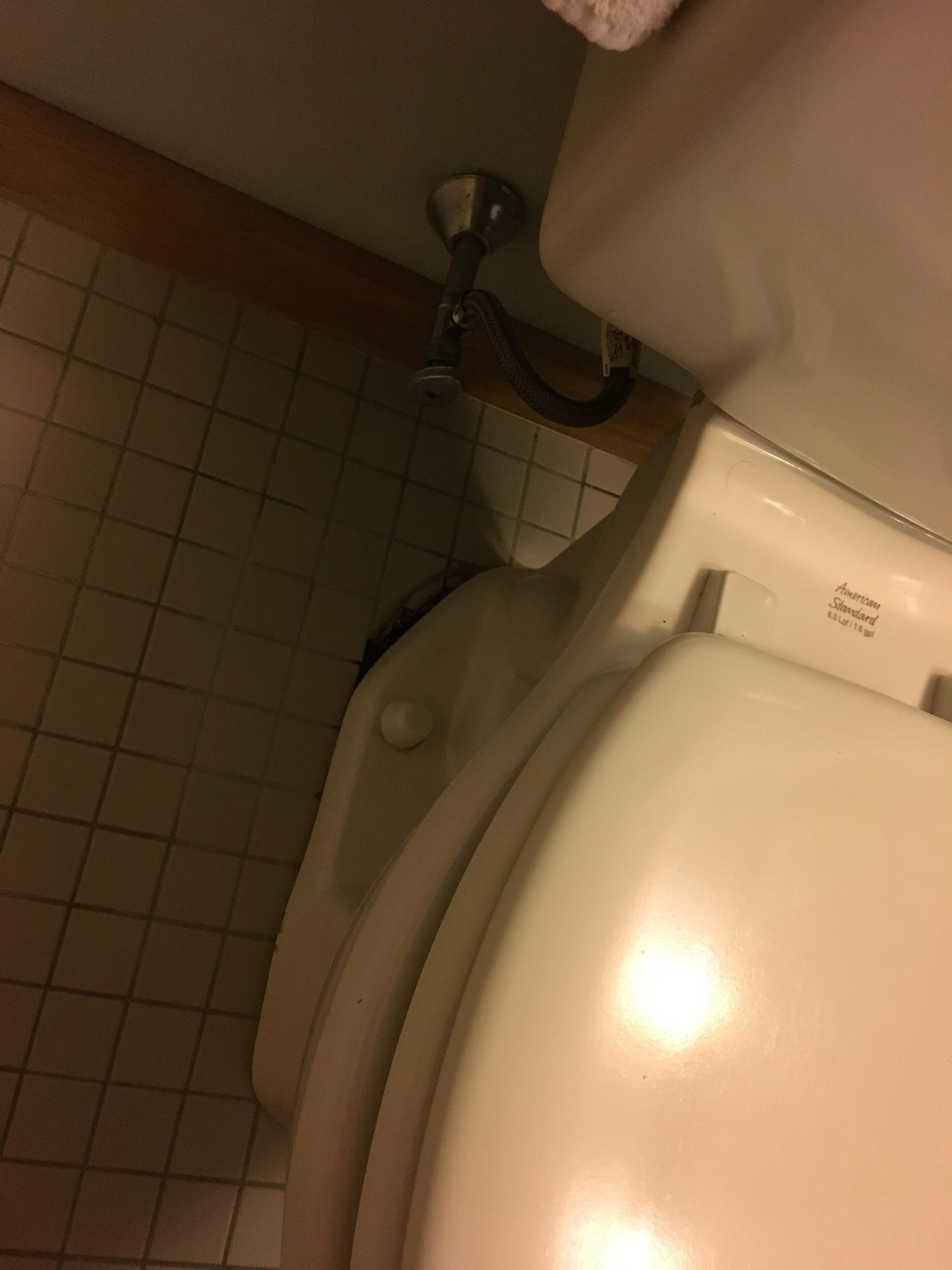 toilet not attached