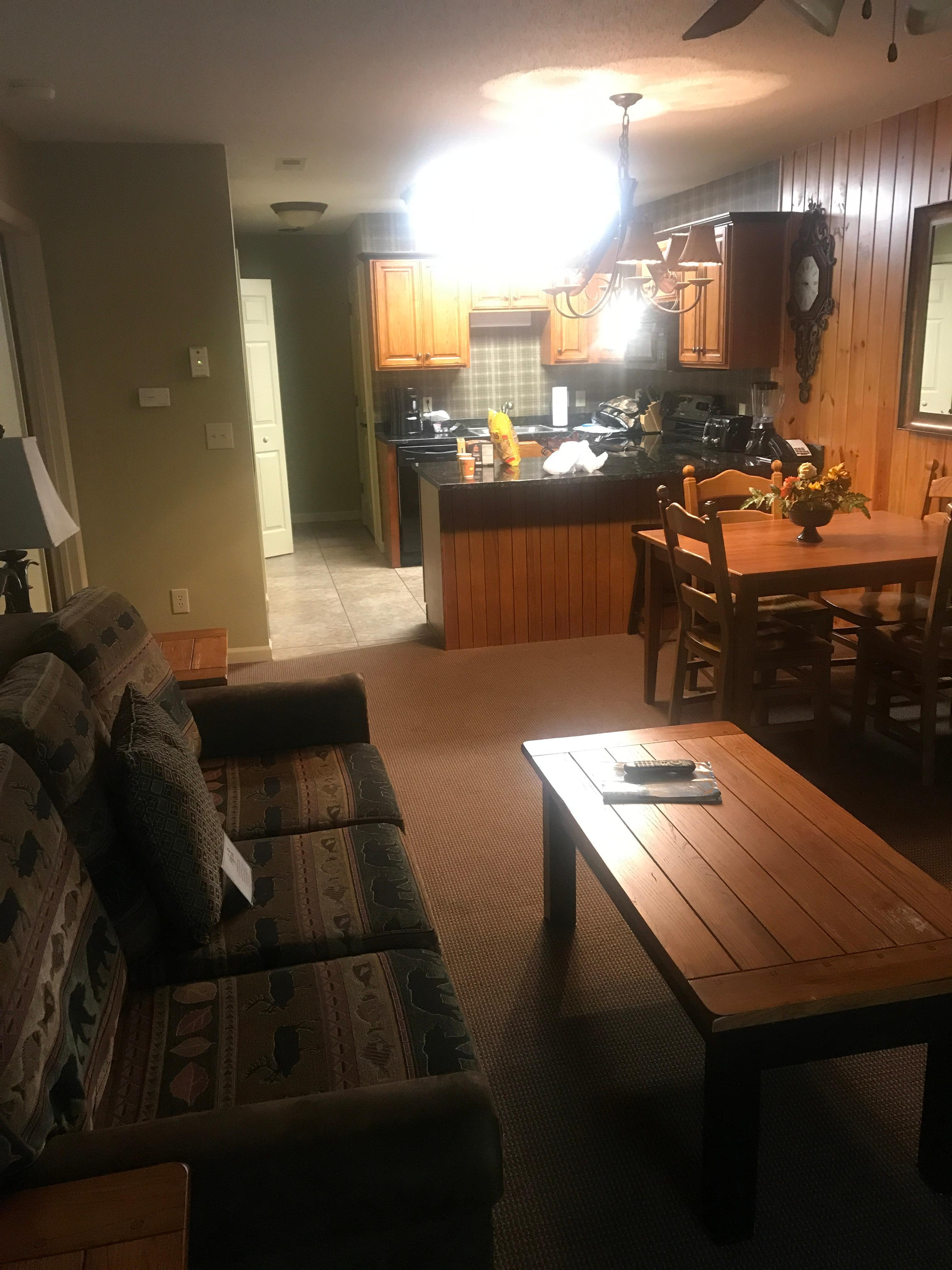 Cozy living room with kitchen