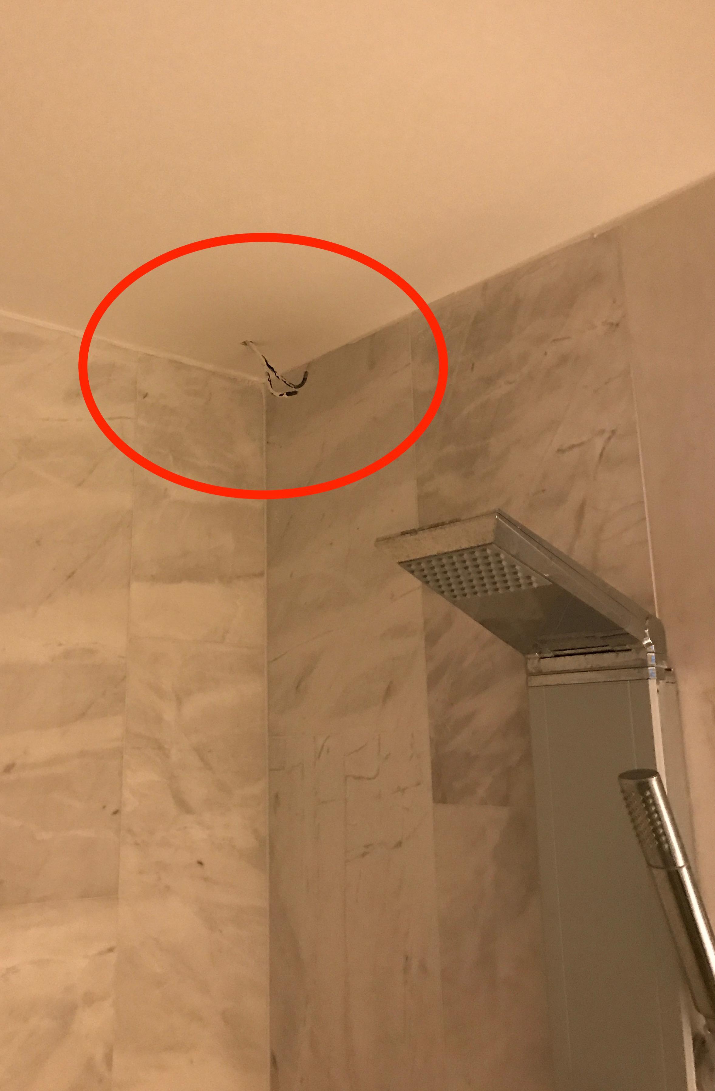 Nakna kablar i duschen