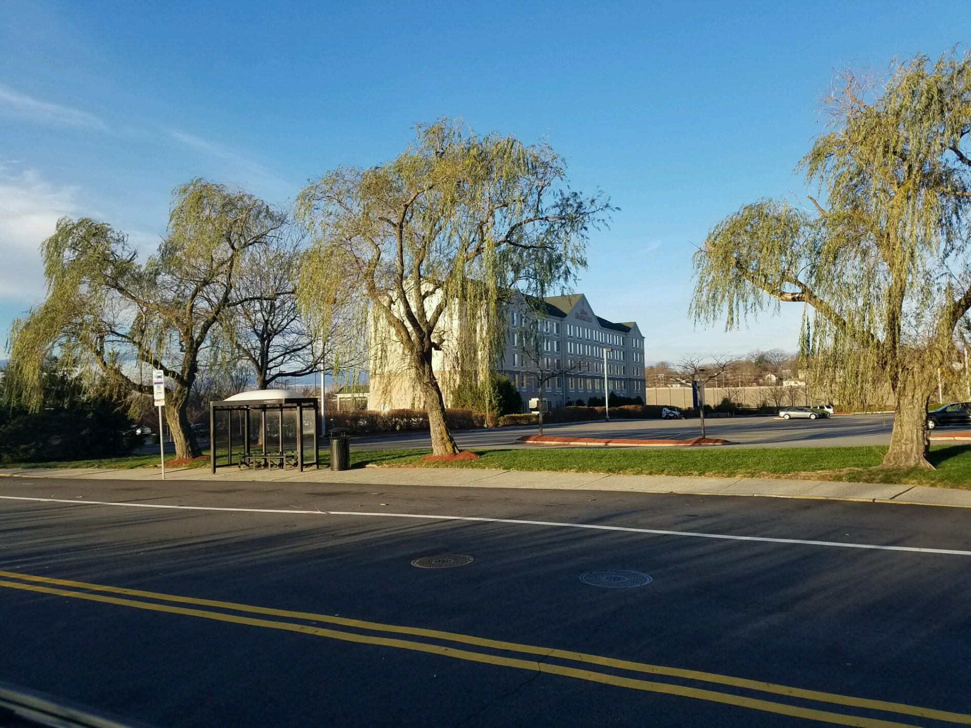two night stop to visit new york - Hilton Garden Inn Ridgefield Park