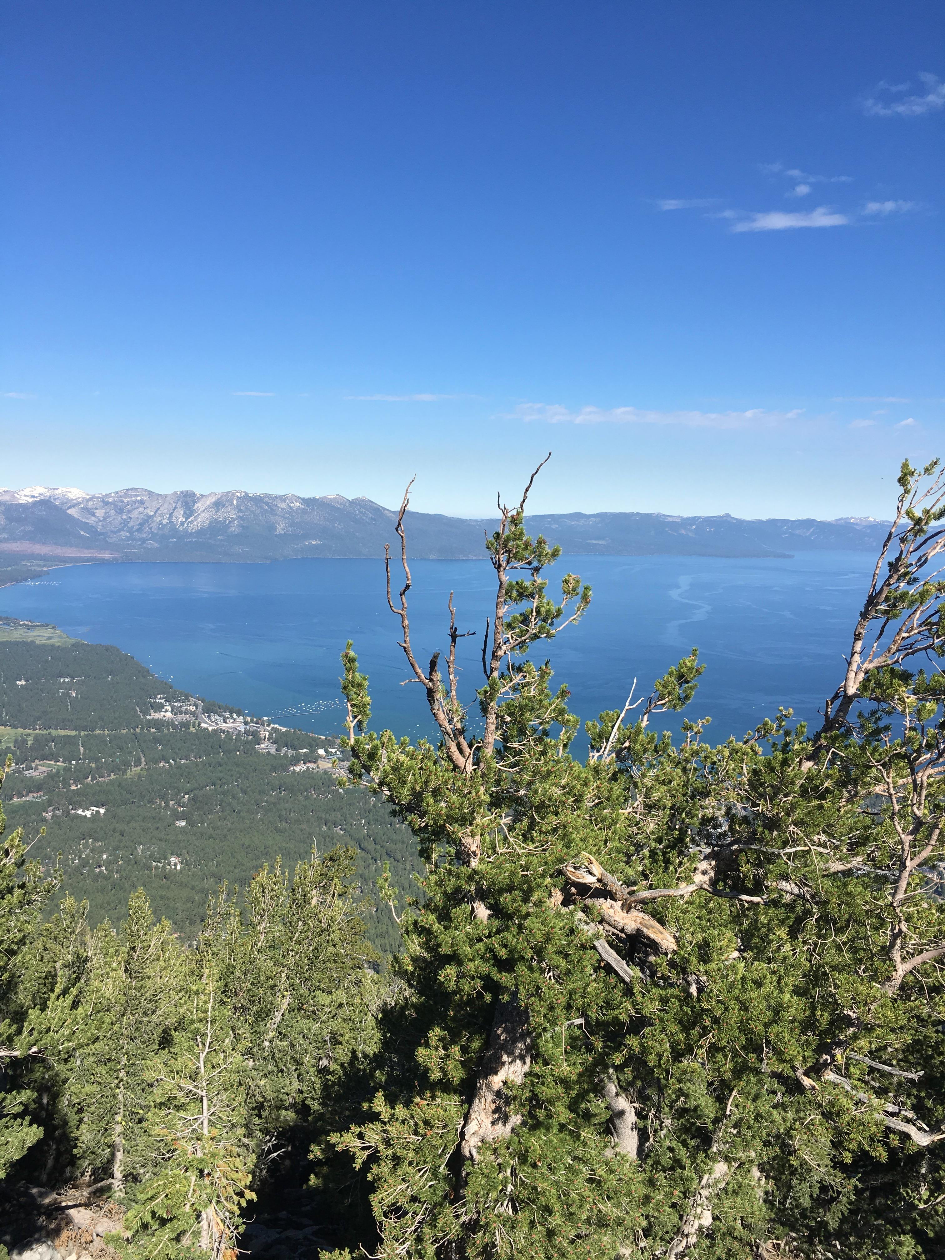 The lake from the top of heavenly