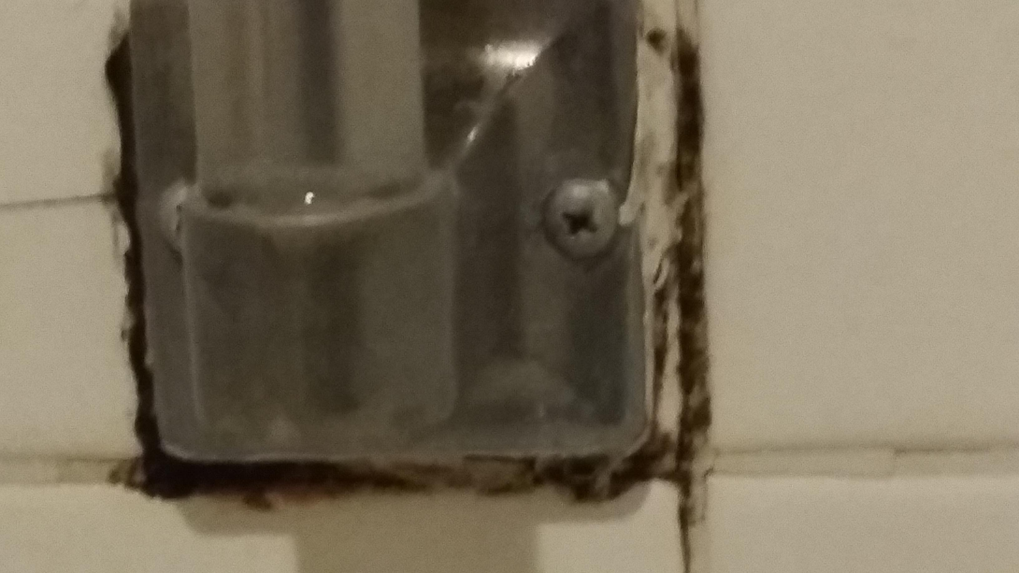 Mold under the soap dish in the tub.