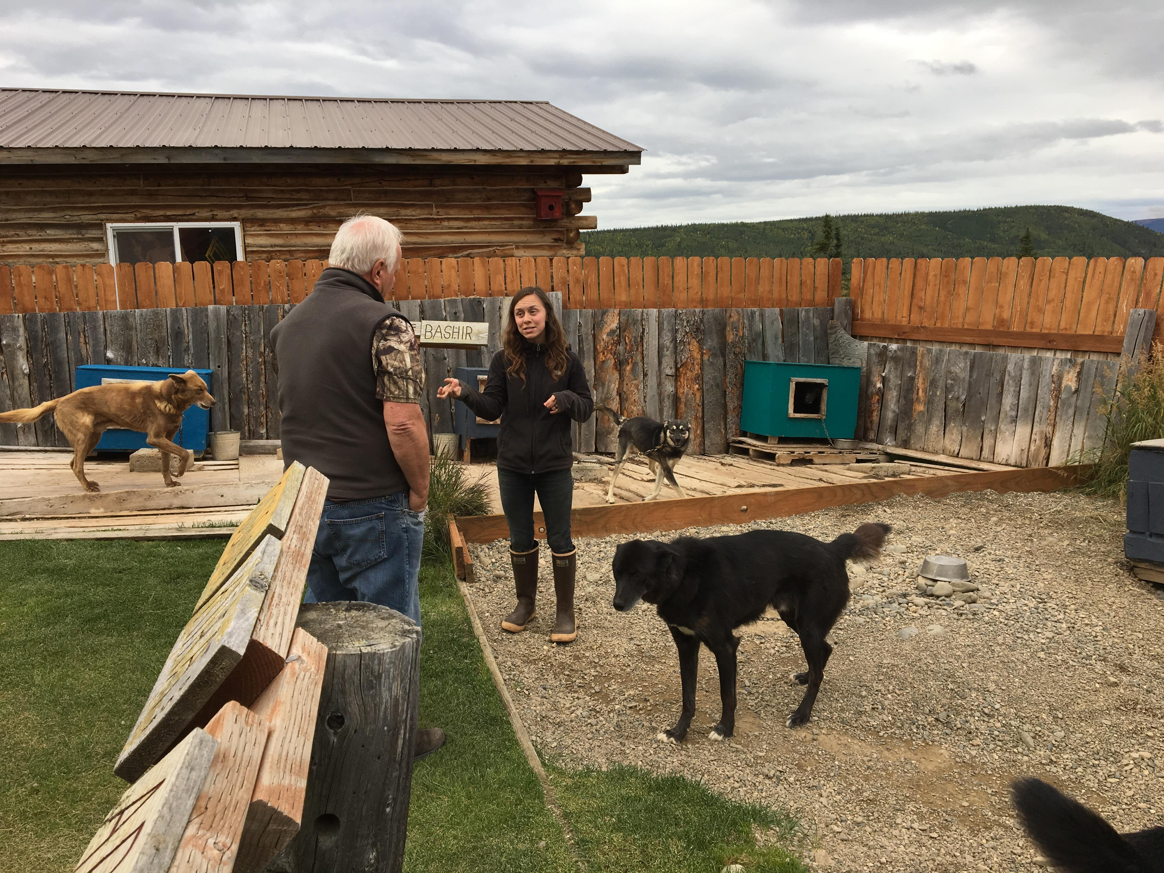 A visit with the sled dogs.