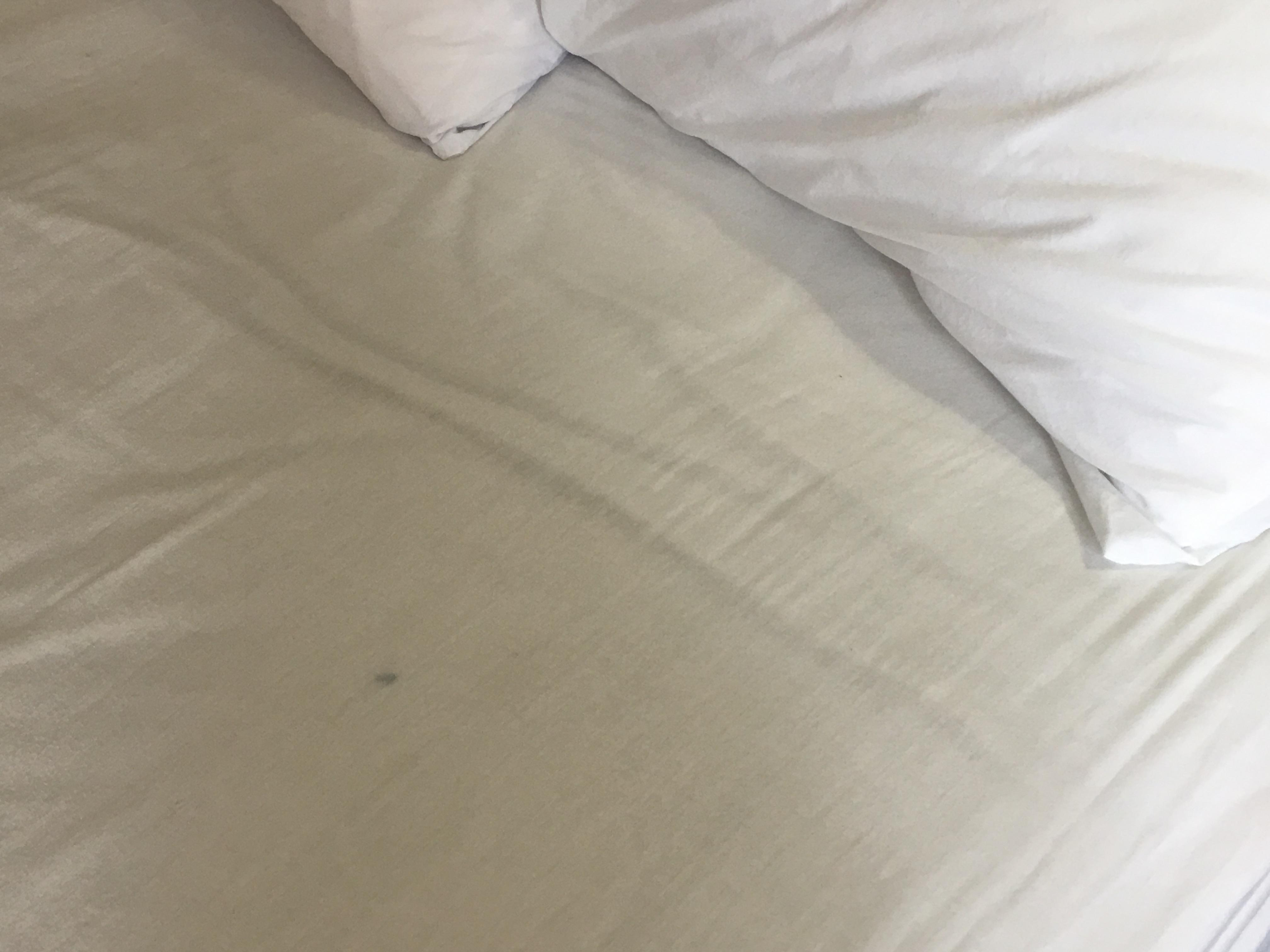Unknown spot on bed