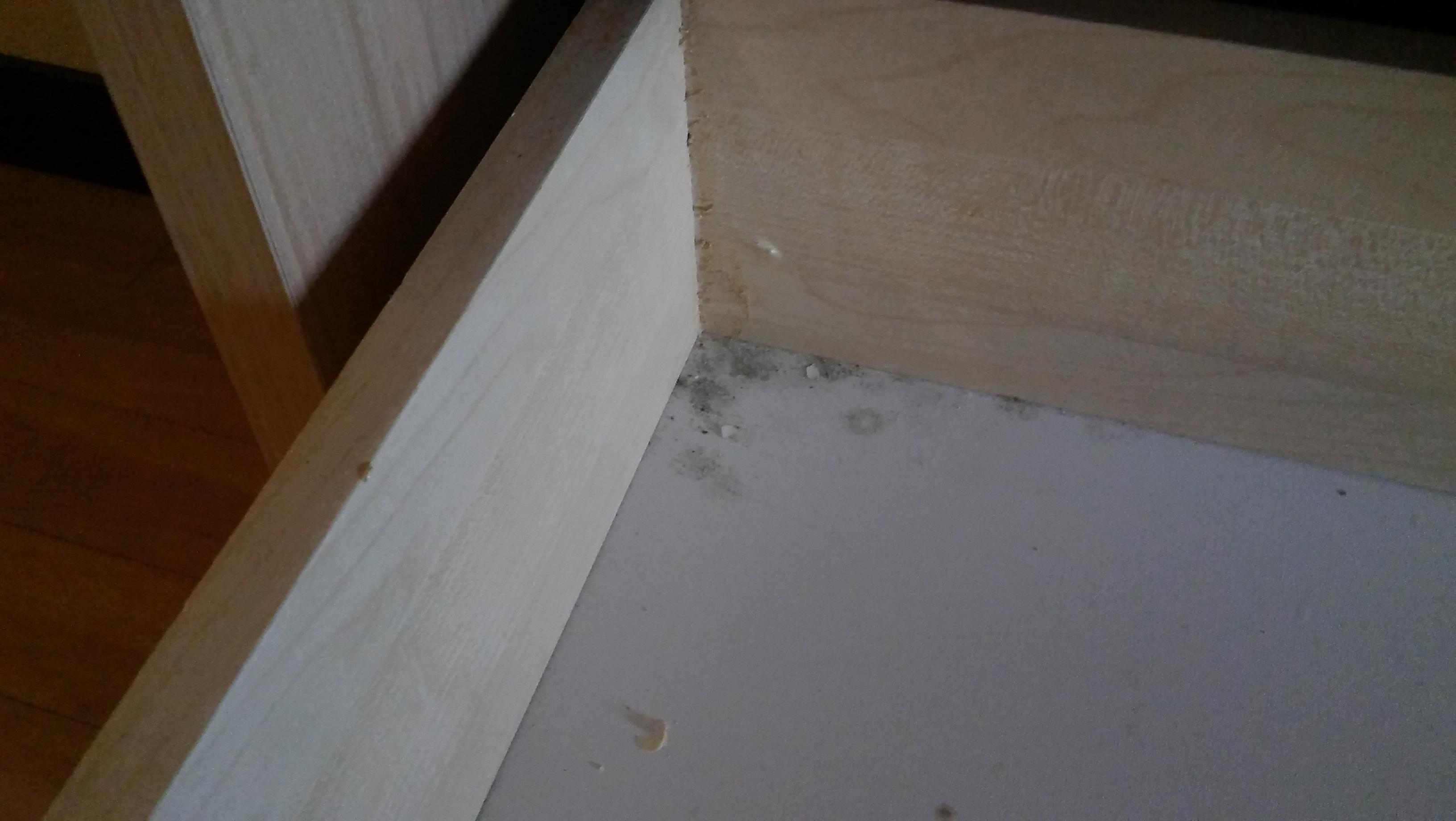 Mold in the dresser drawer