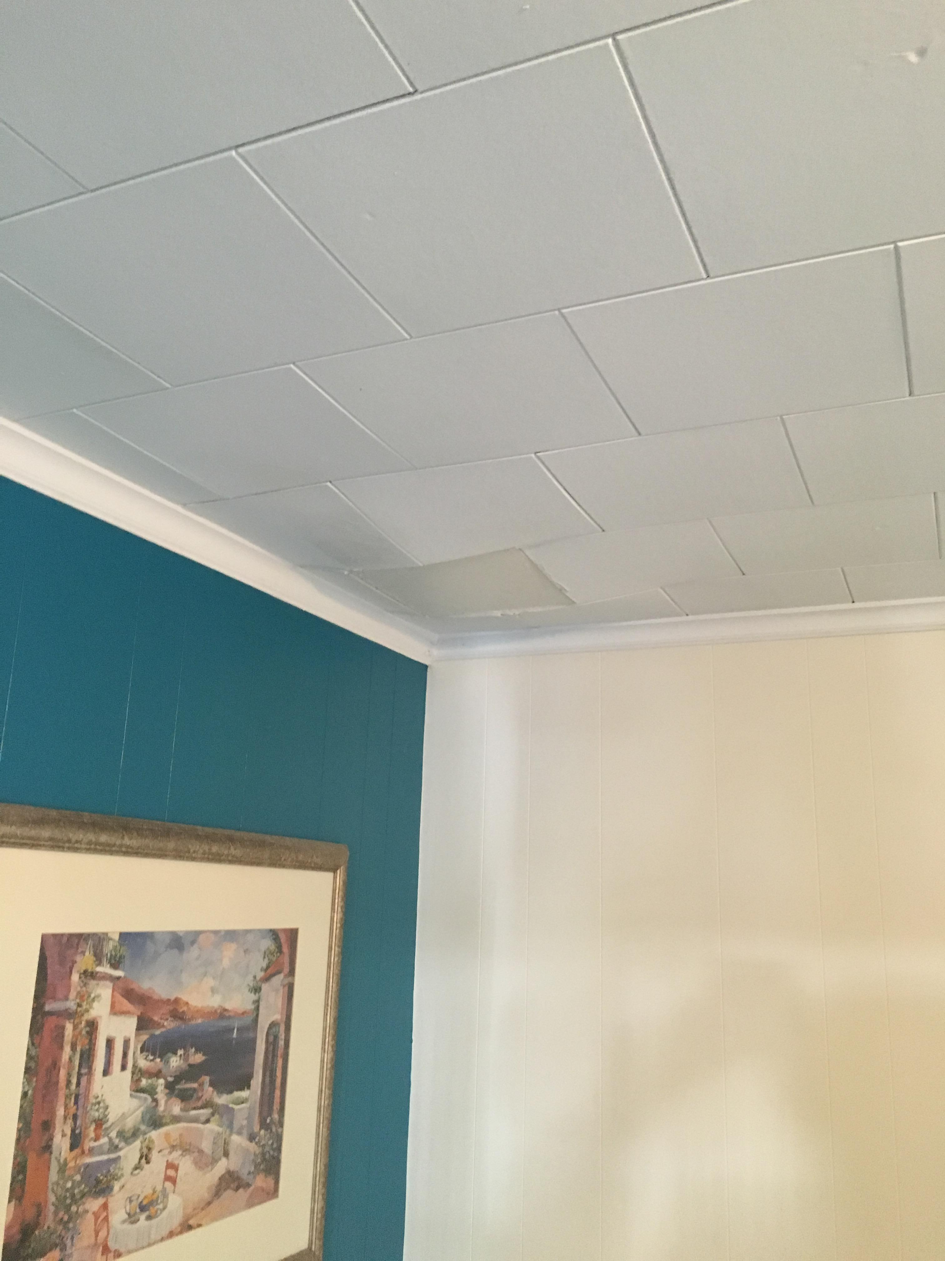 Cieling collapsing