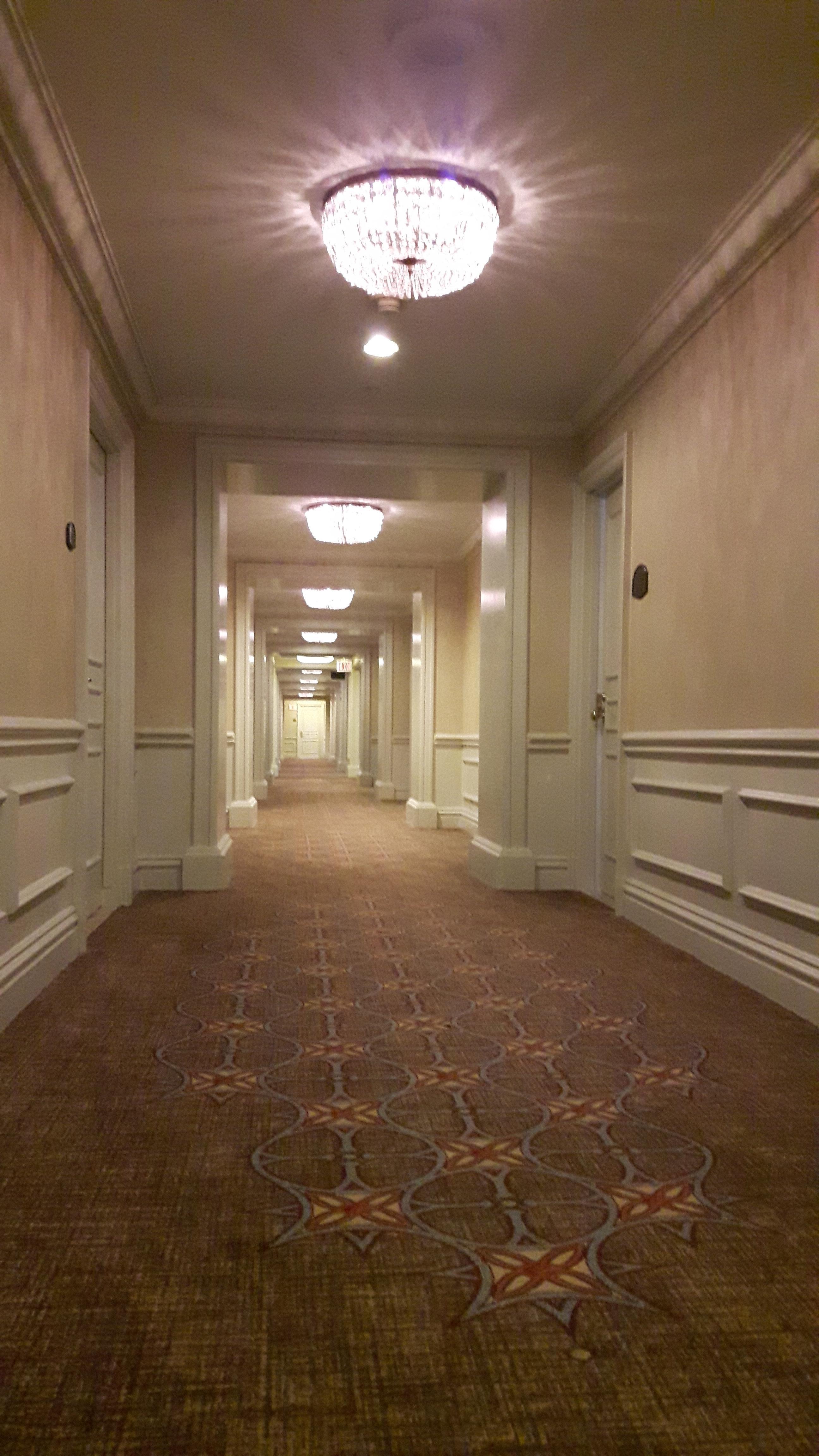 14th floor hallway