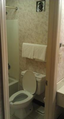 bathroom, needs work