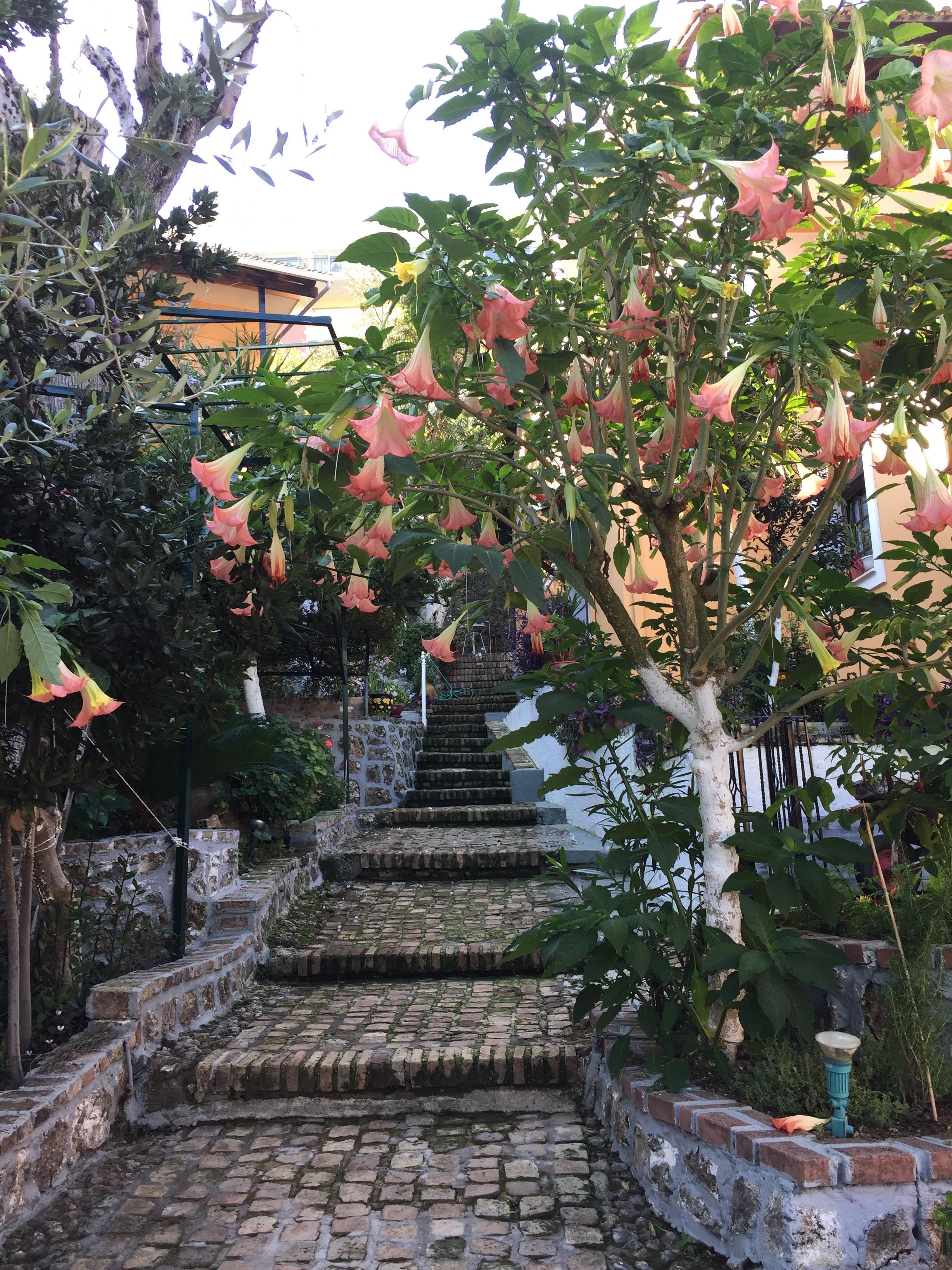 lauschige Treppengänge zwischen den Bungalows