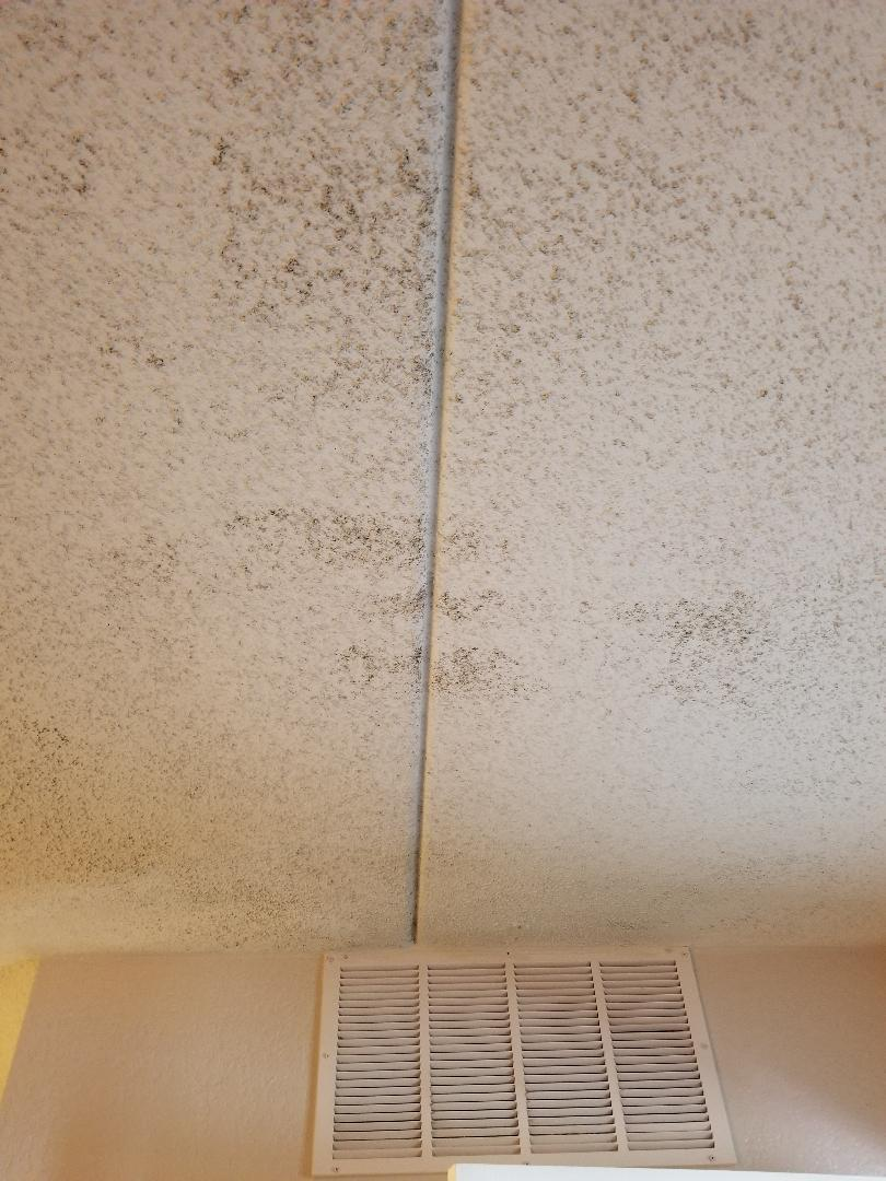 Ceiling across from AC