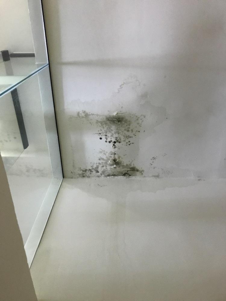 Ceiling leaks