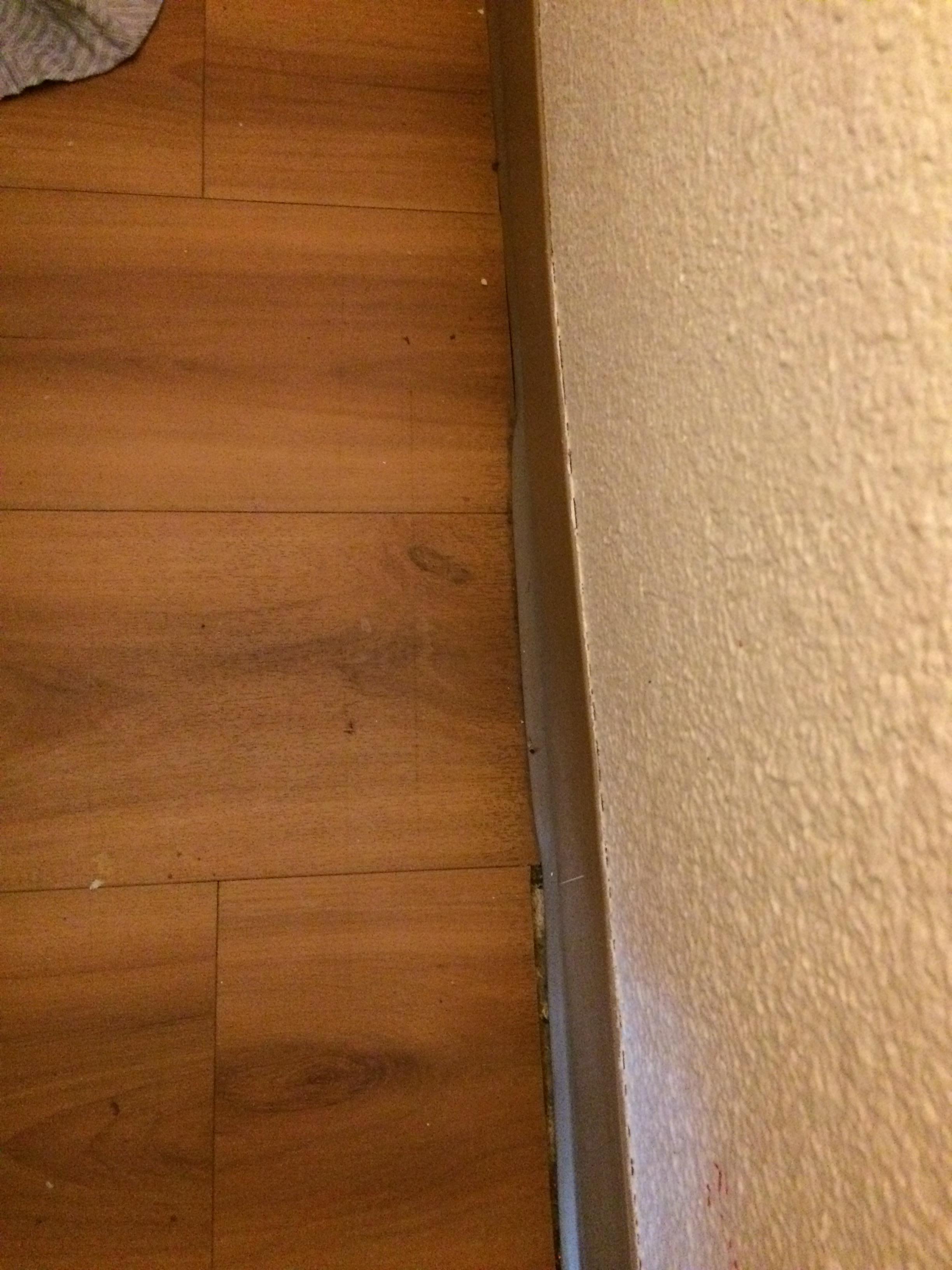 Motel 6 Tacoma South in Tacoma   Hotel Rates & Reviews on Orbitz