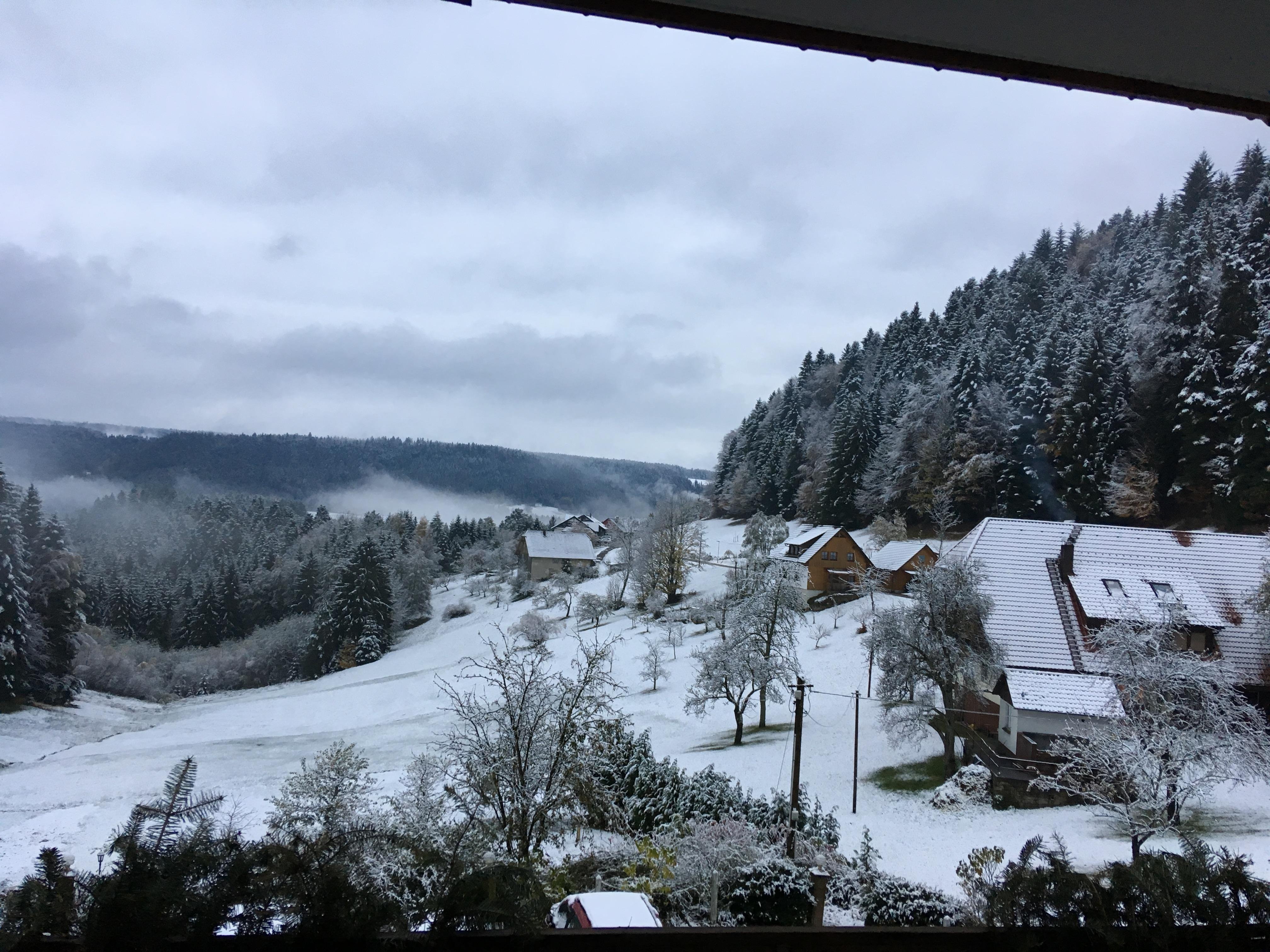 6.Nov.2017 Blick aus dem Fenster