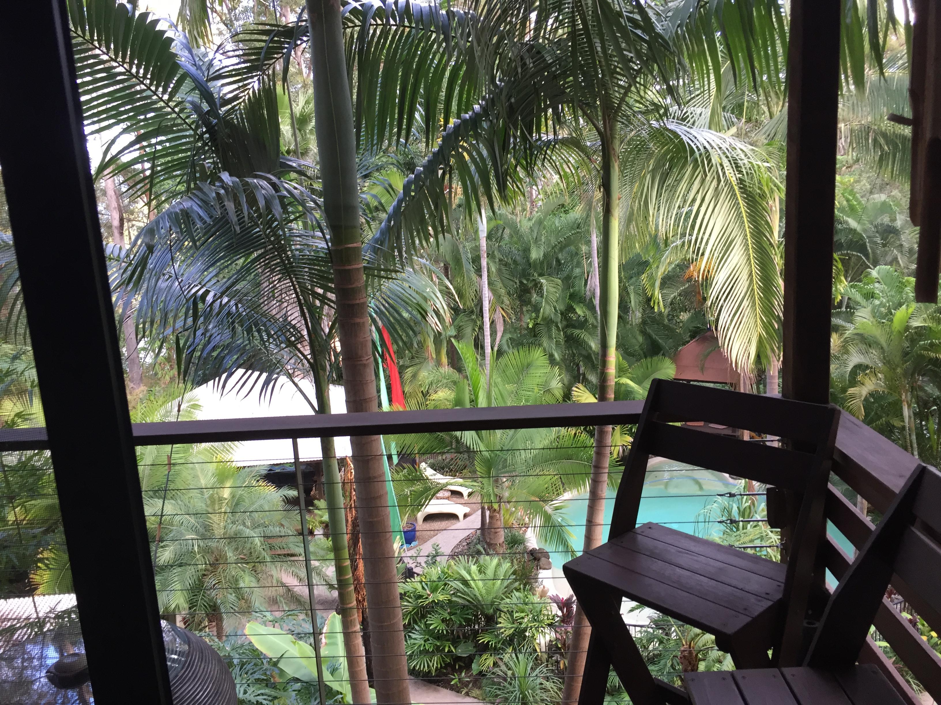 Balcony overlooking rainforest and dipping pool