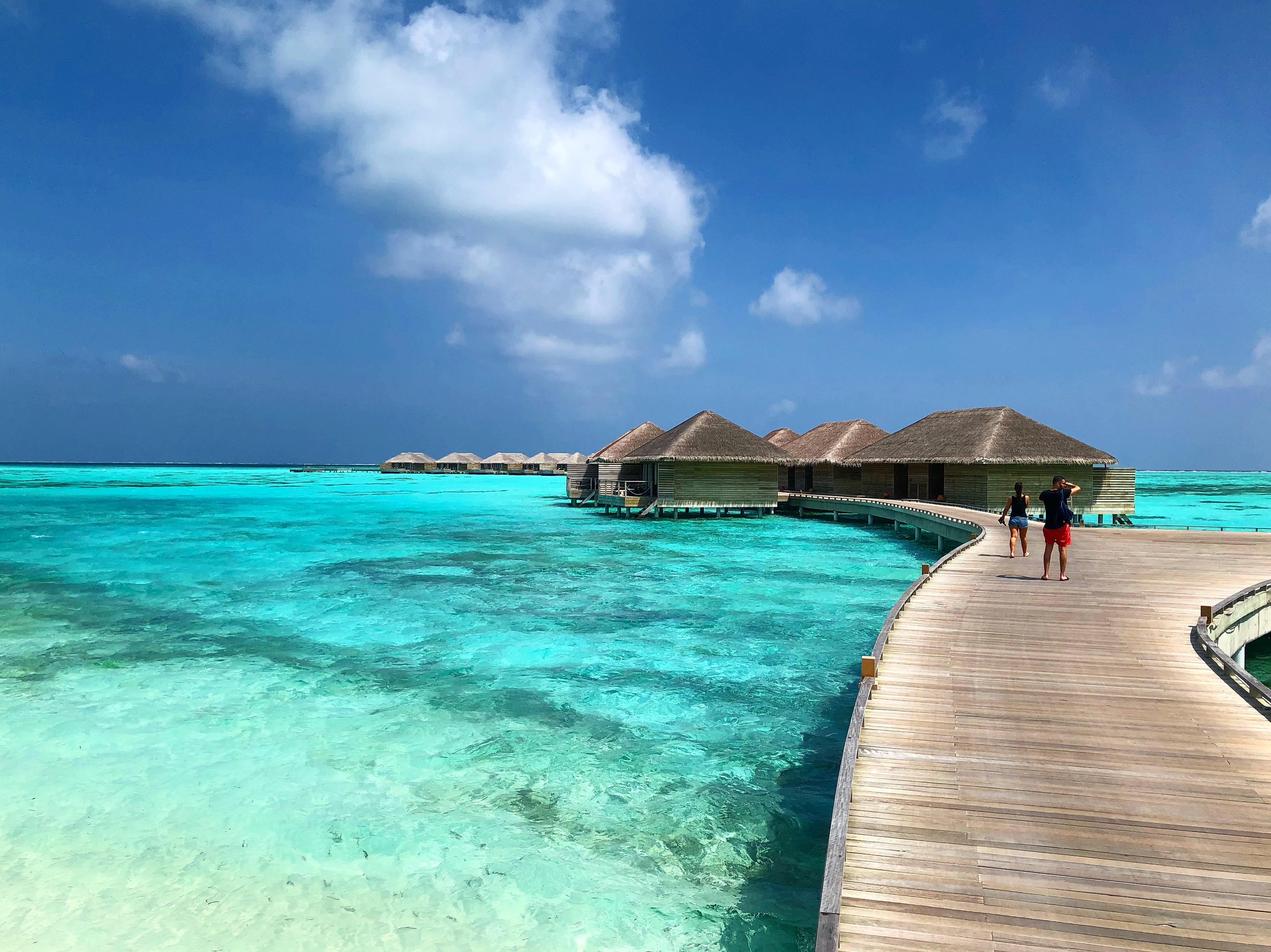 fc7f11c3ddd Cocoon Maldives  2019 Room Prices  223