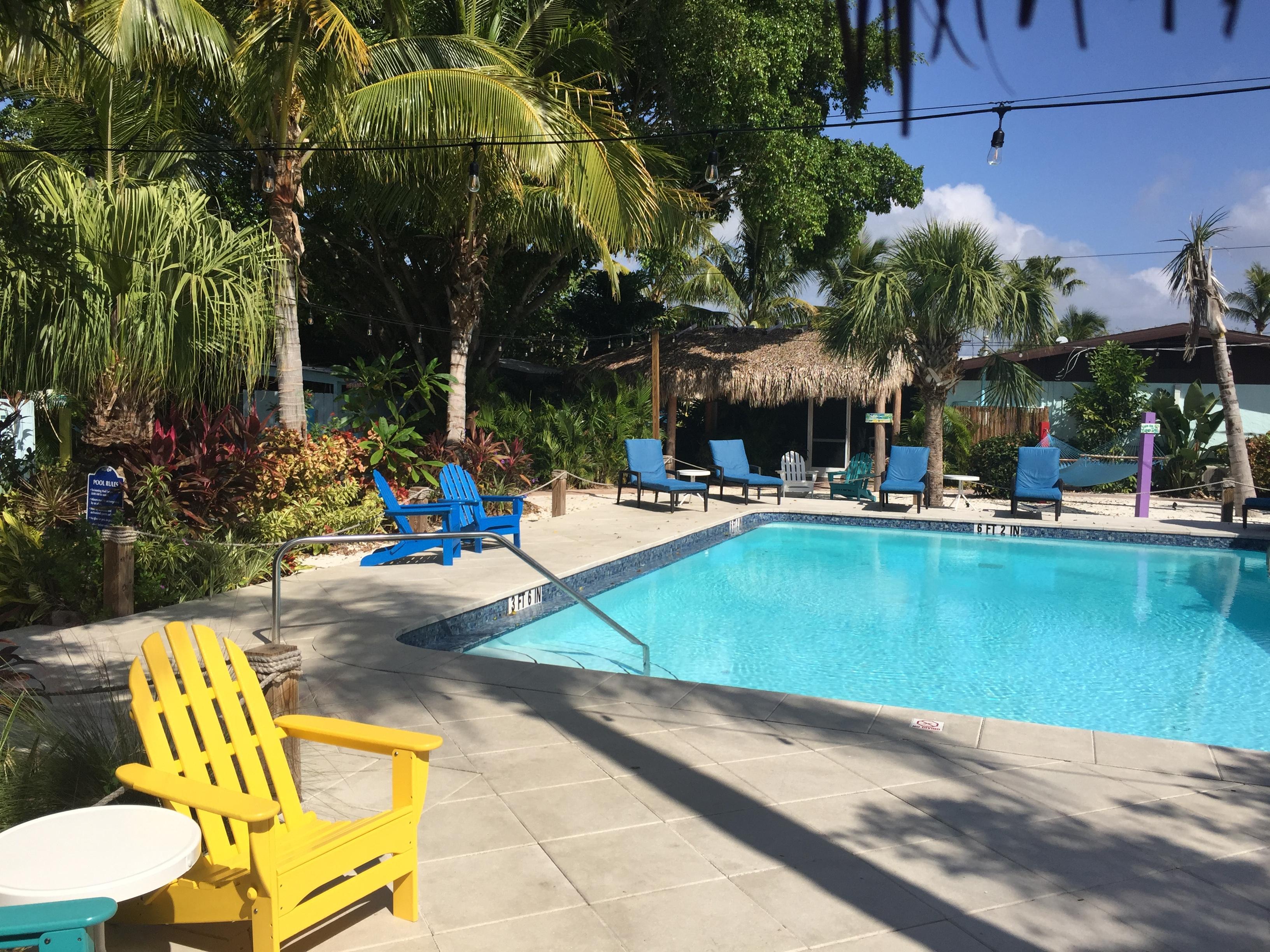 Siesta Key Palms Hotel In Sarasota Hotel Rates Reviews On Orbitz