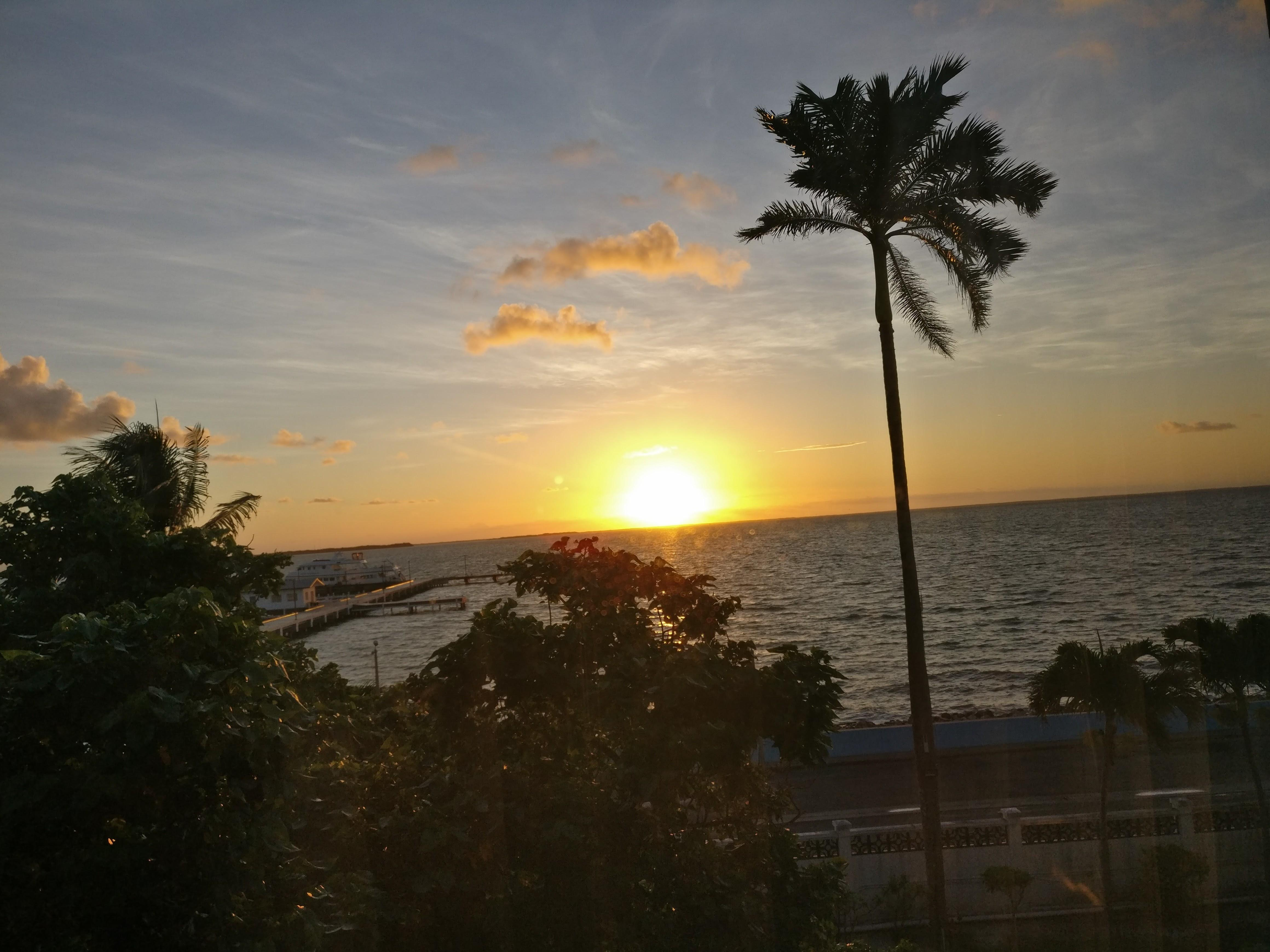 Sunrise view from my room.