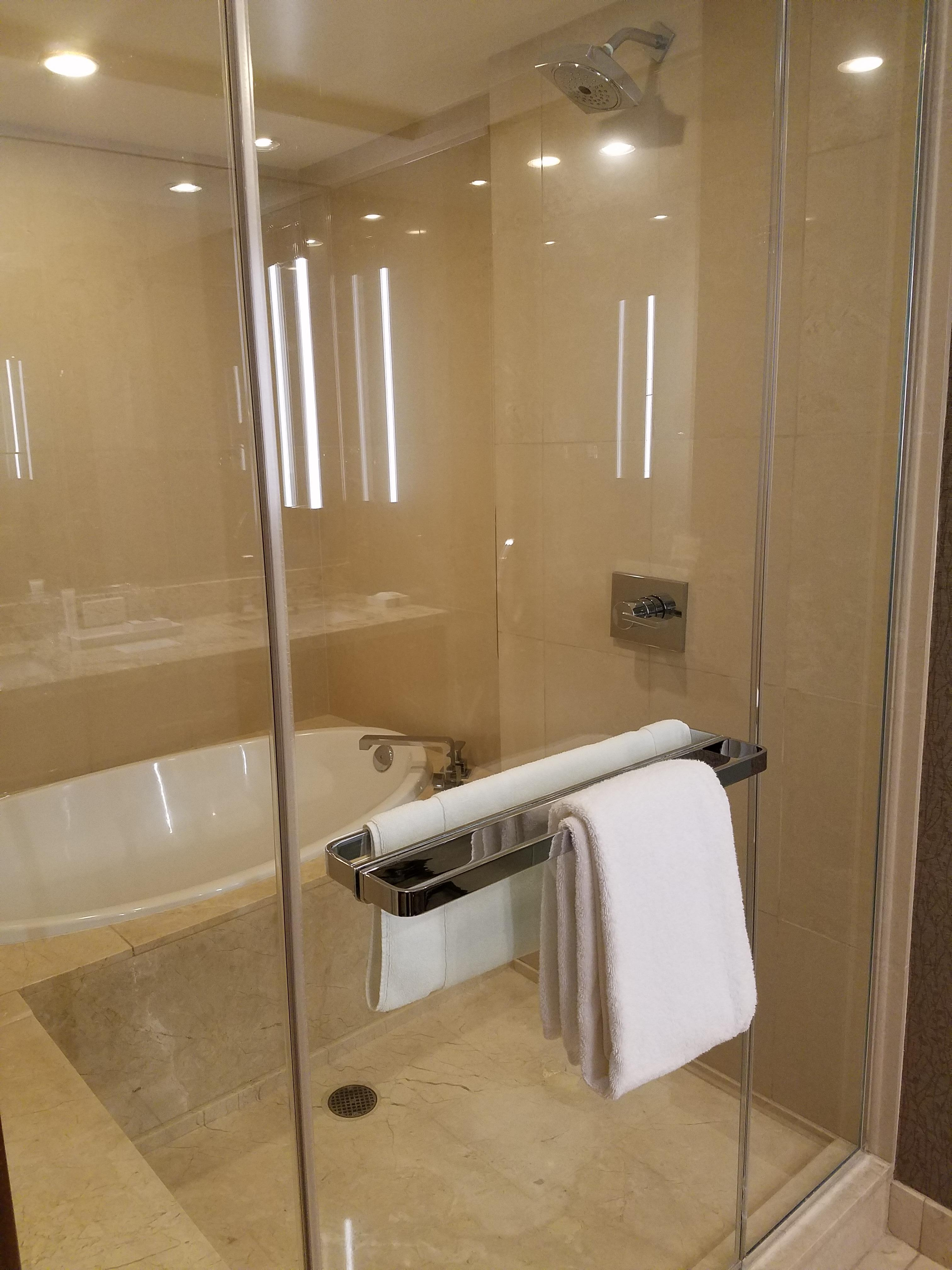 Bathing area in bathroom