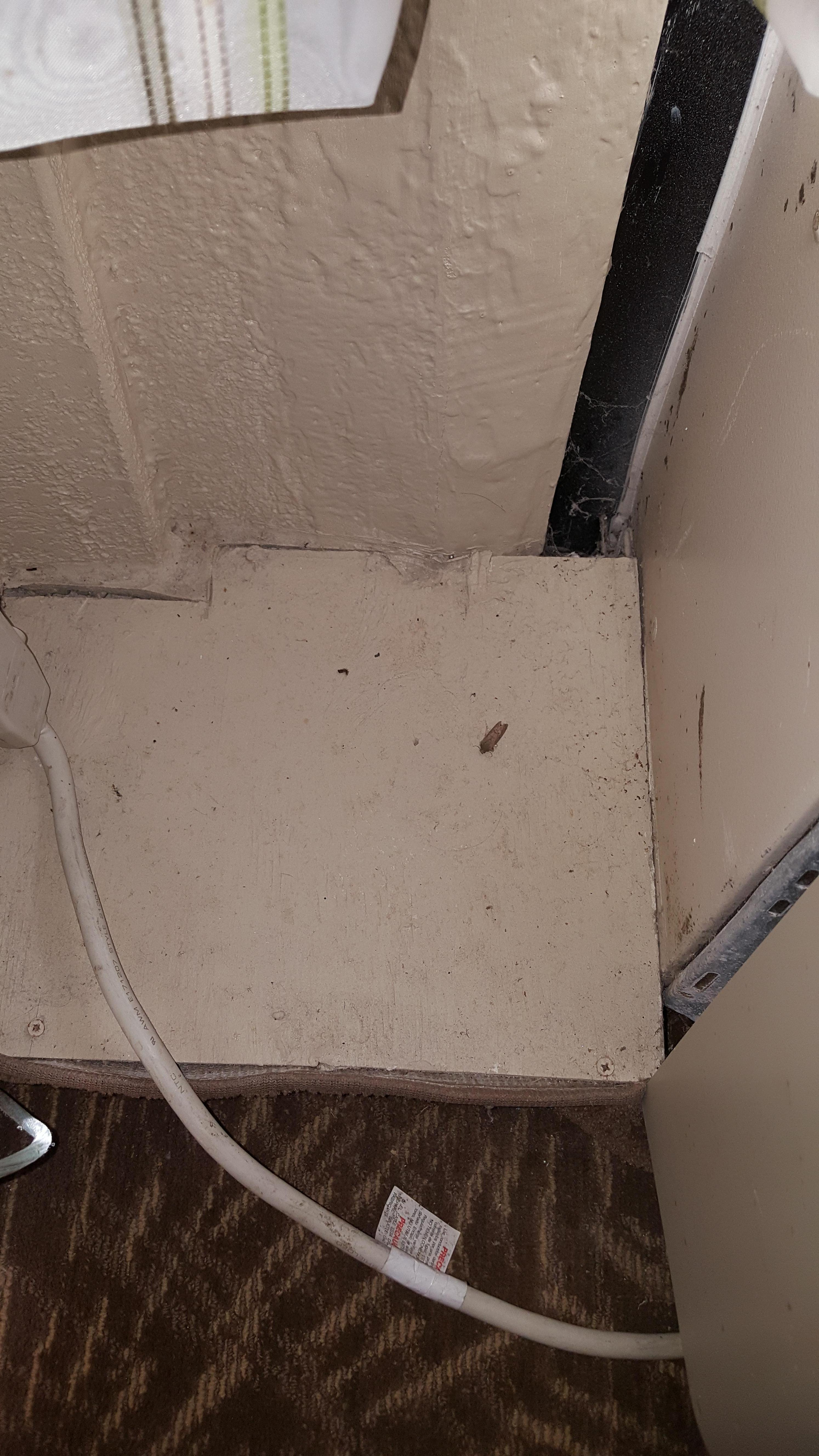 dirt and spider webs next to the heater unit