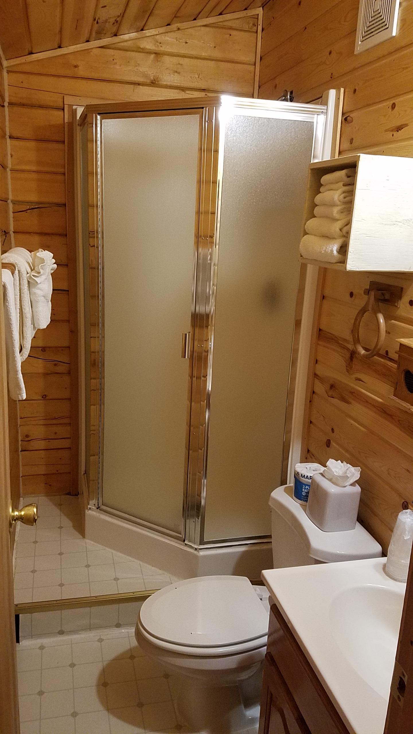Woodsy cabin bathroom