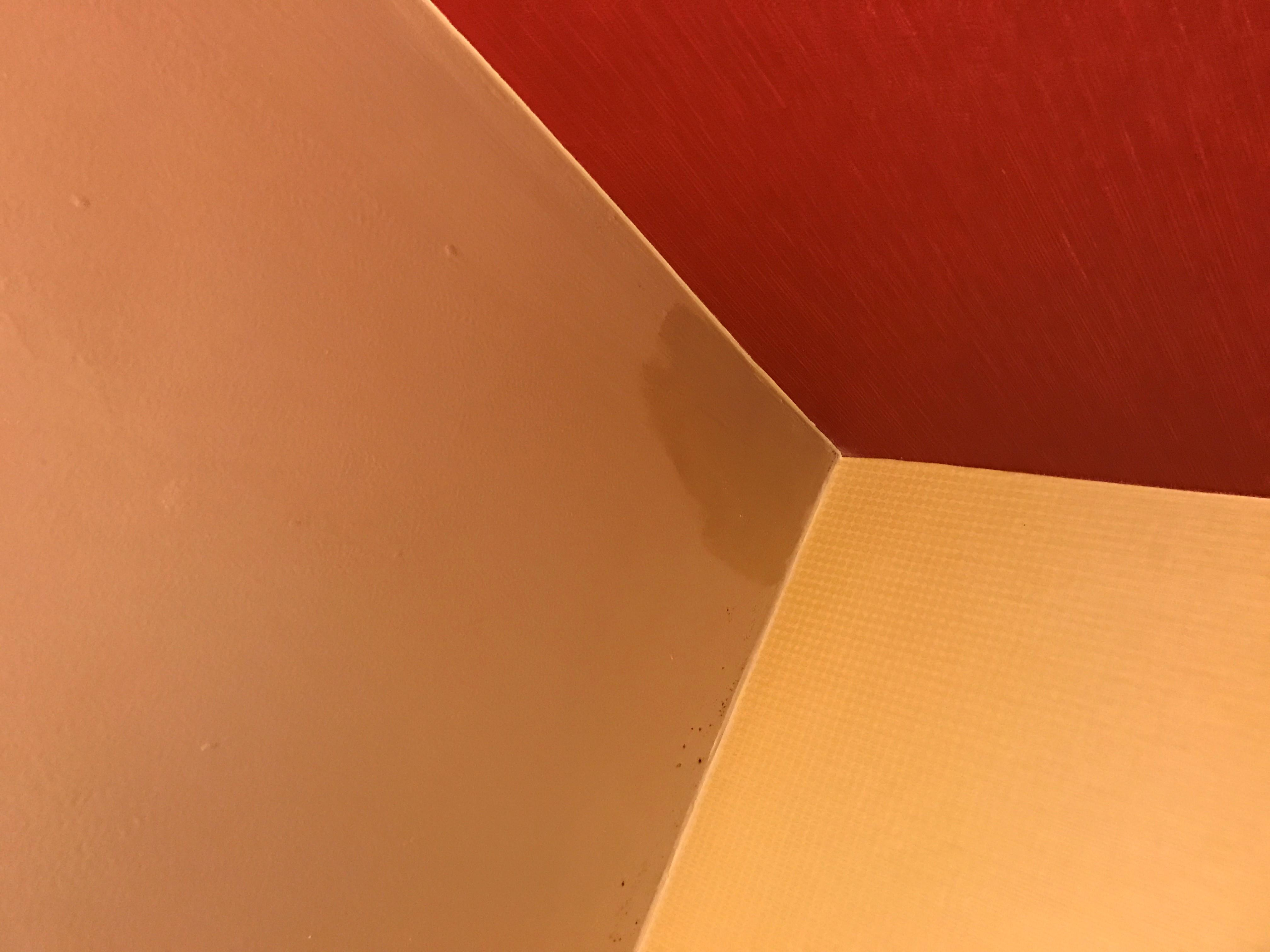 leak on the ceiing the red is the wall parer
