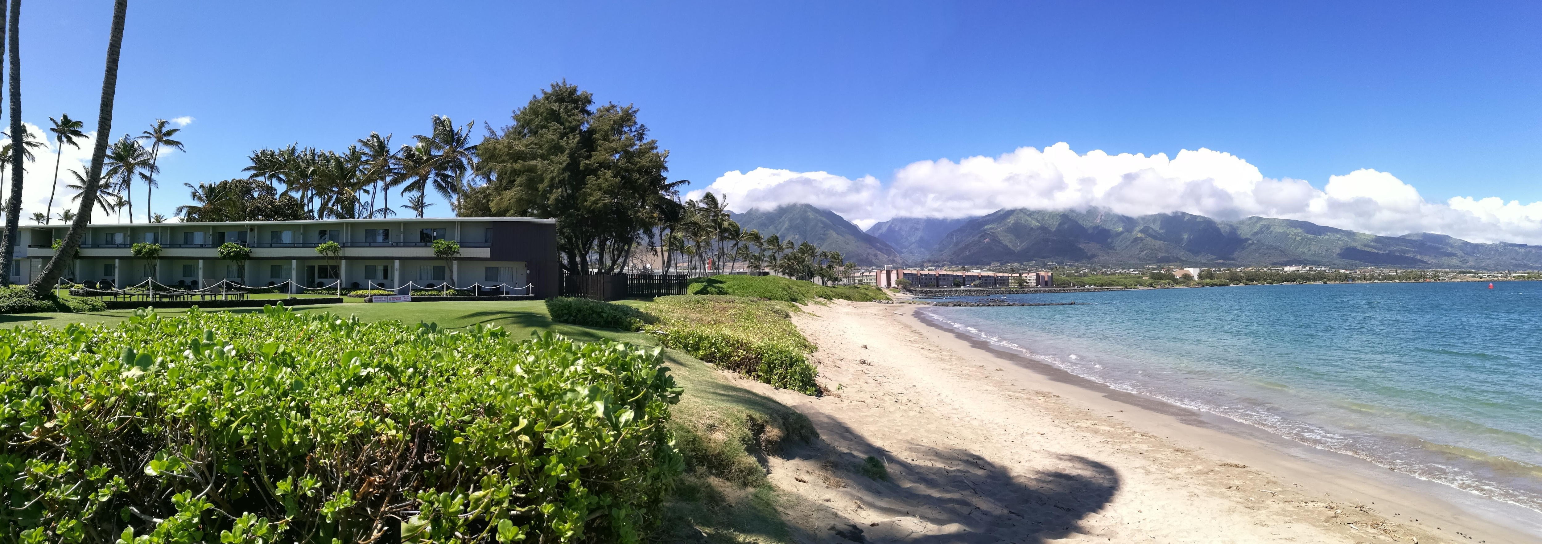 Beachfront view from grounds