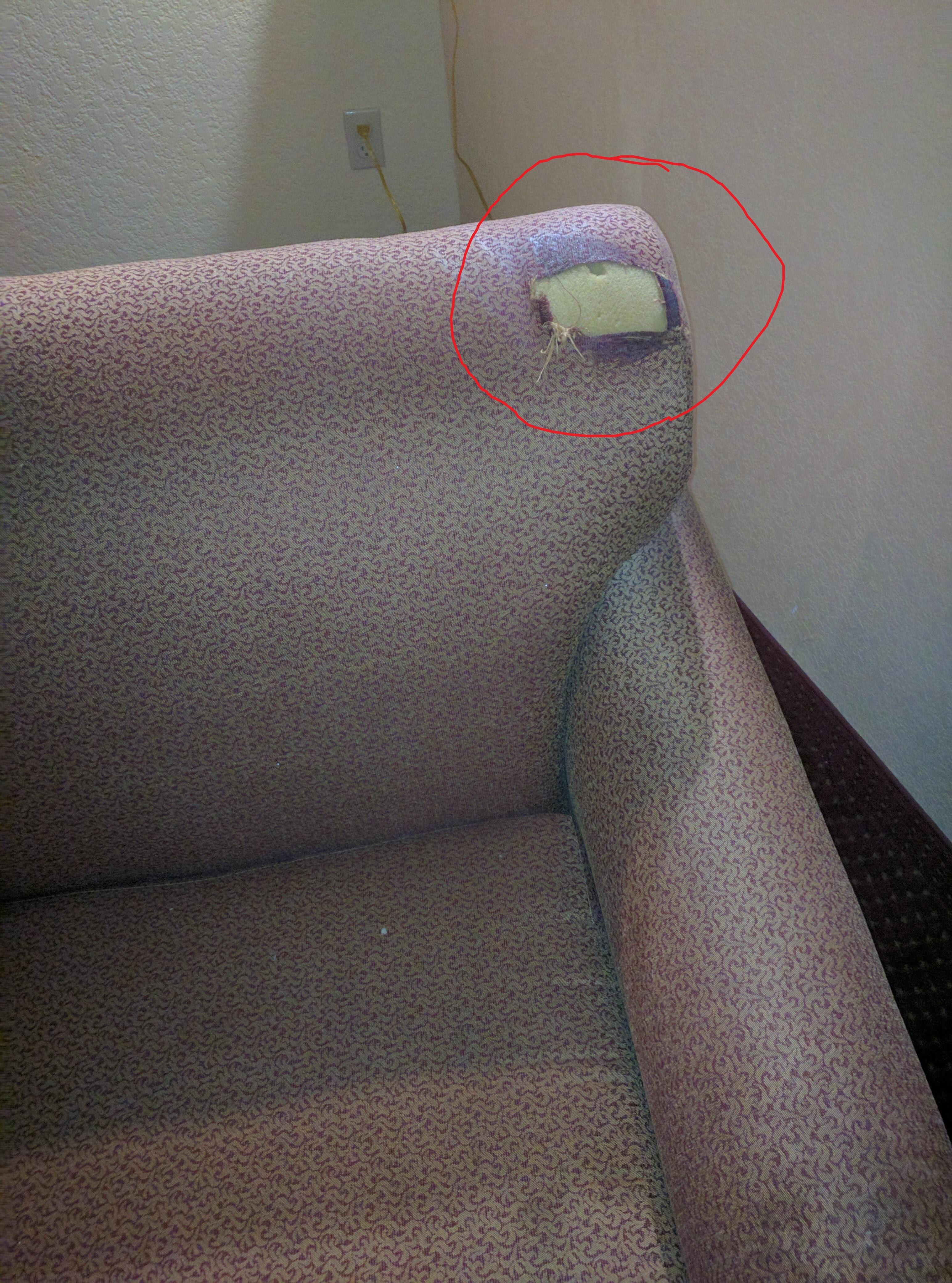 Torn Sofa